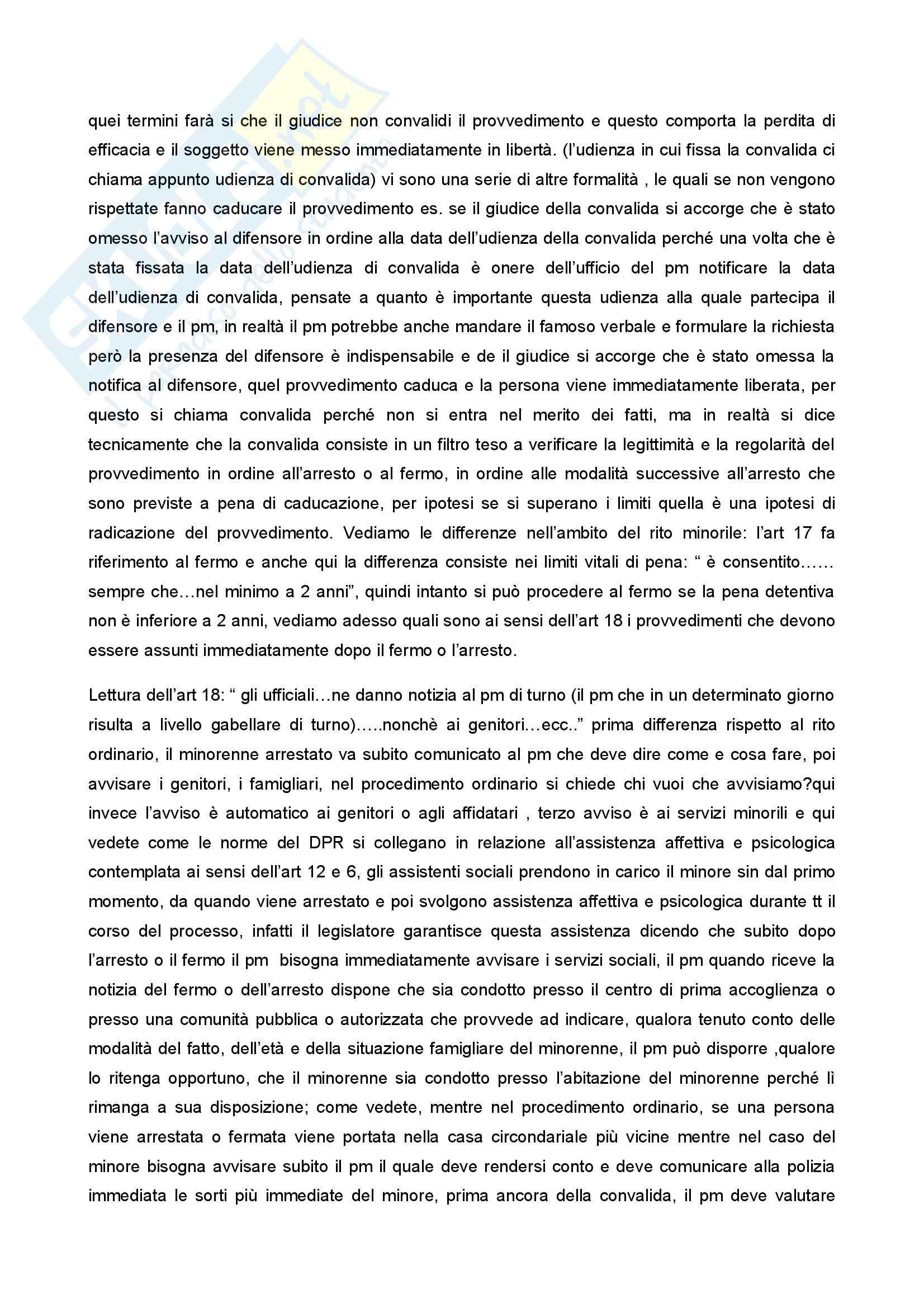 Diritto penale minorile - Corso completo Pag. 86