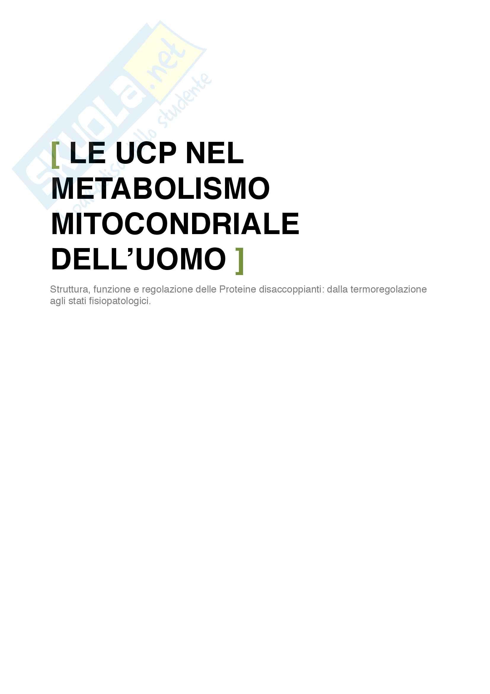 Tesina UCP: Proteine disaccoppianti mitocondriali