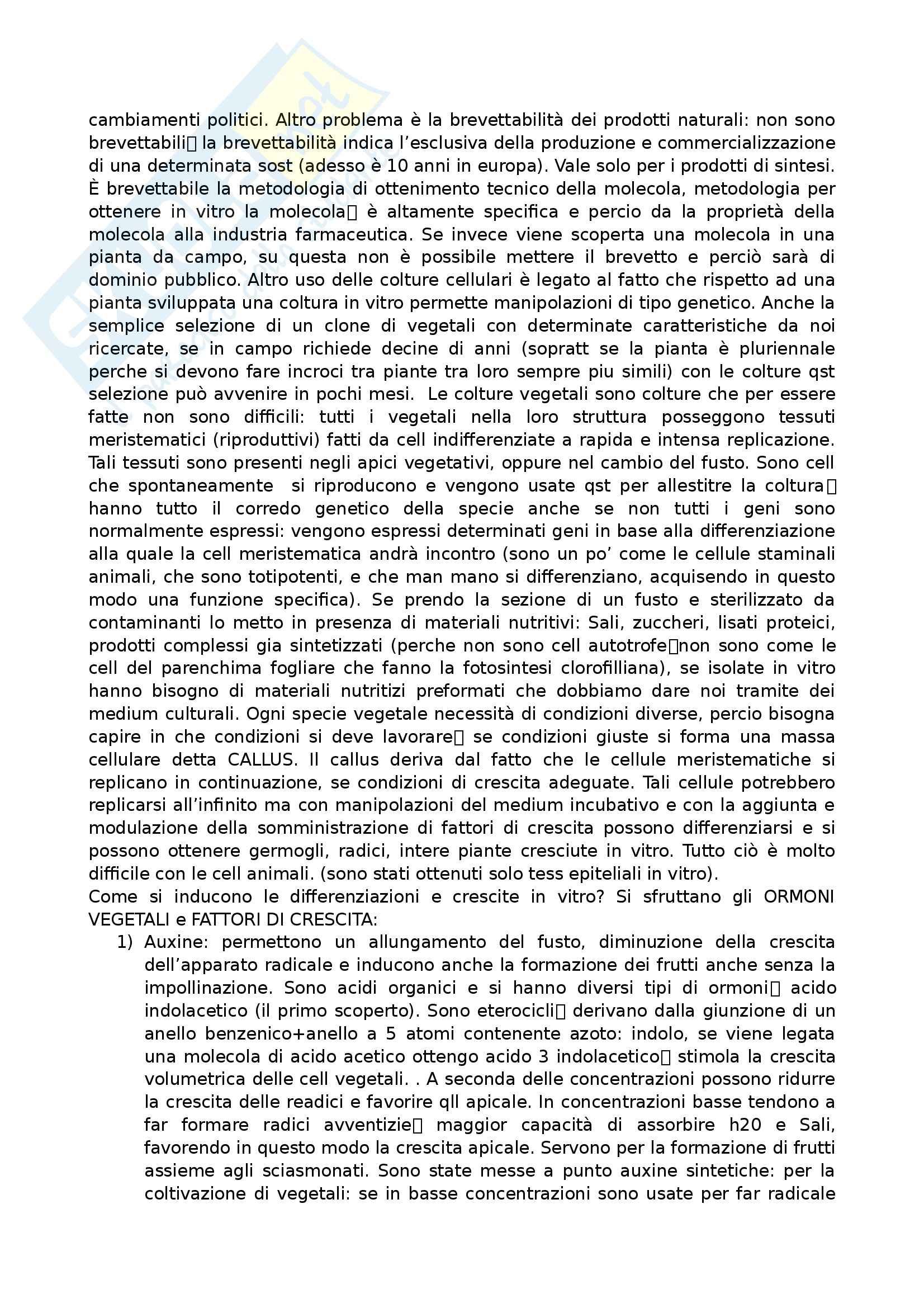 Farmacognosia - Appunti Pag. 16