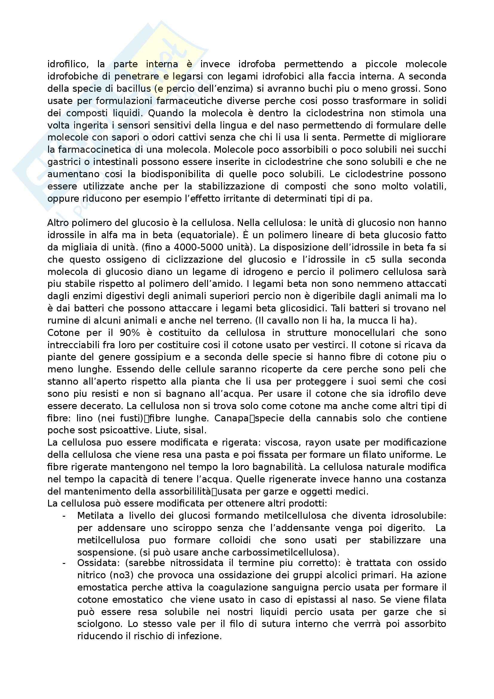 Farmacognosia - Appunti Pag. 31