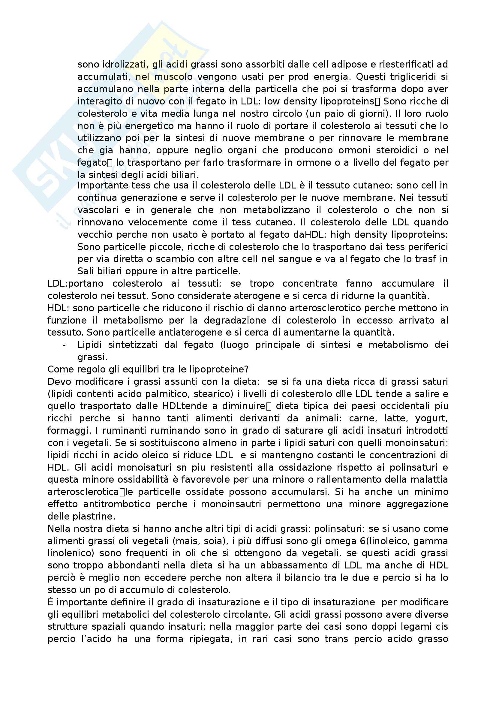 Farmacognosia - Appunti Pag. 41