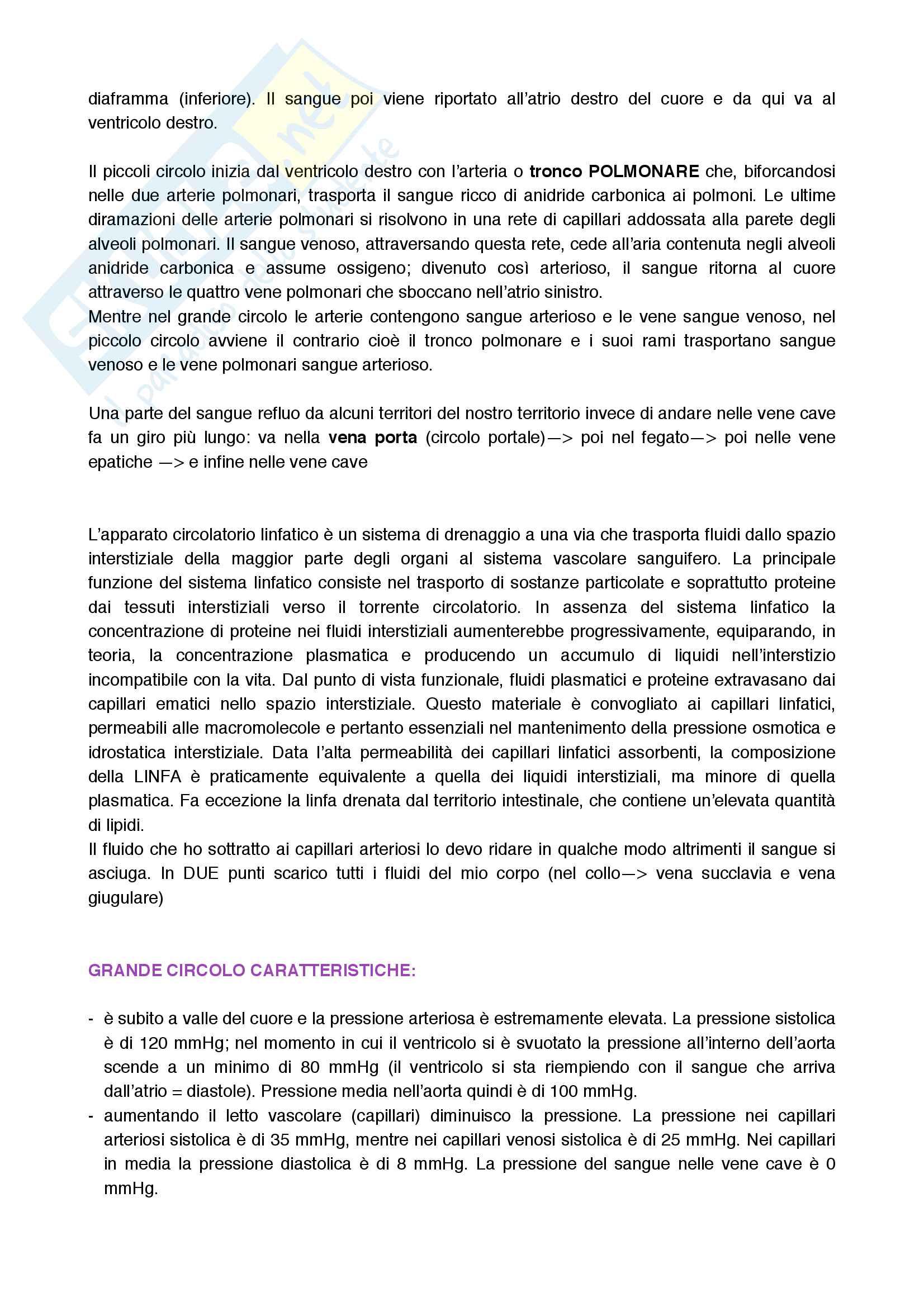 Cuore, sistema di conduzione e sua circolazione Pag. 2