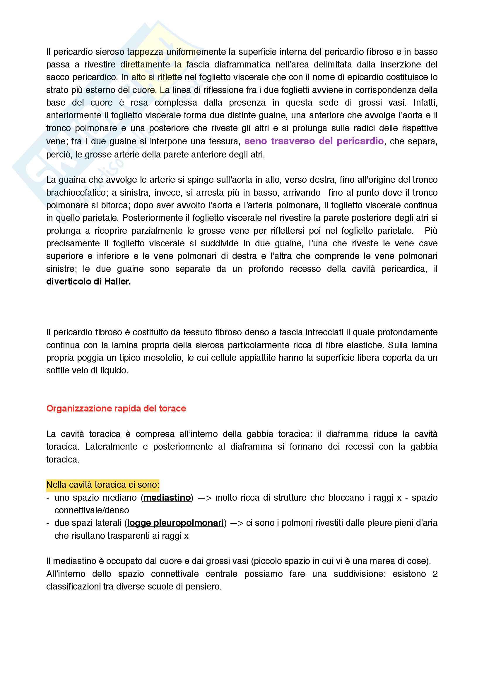 Cuore, sistema di conduzione e sua circolazione Pag. 26