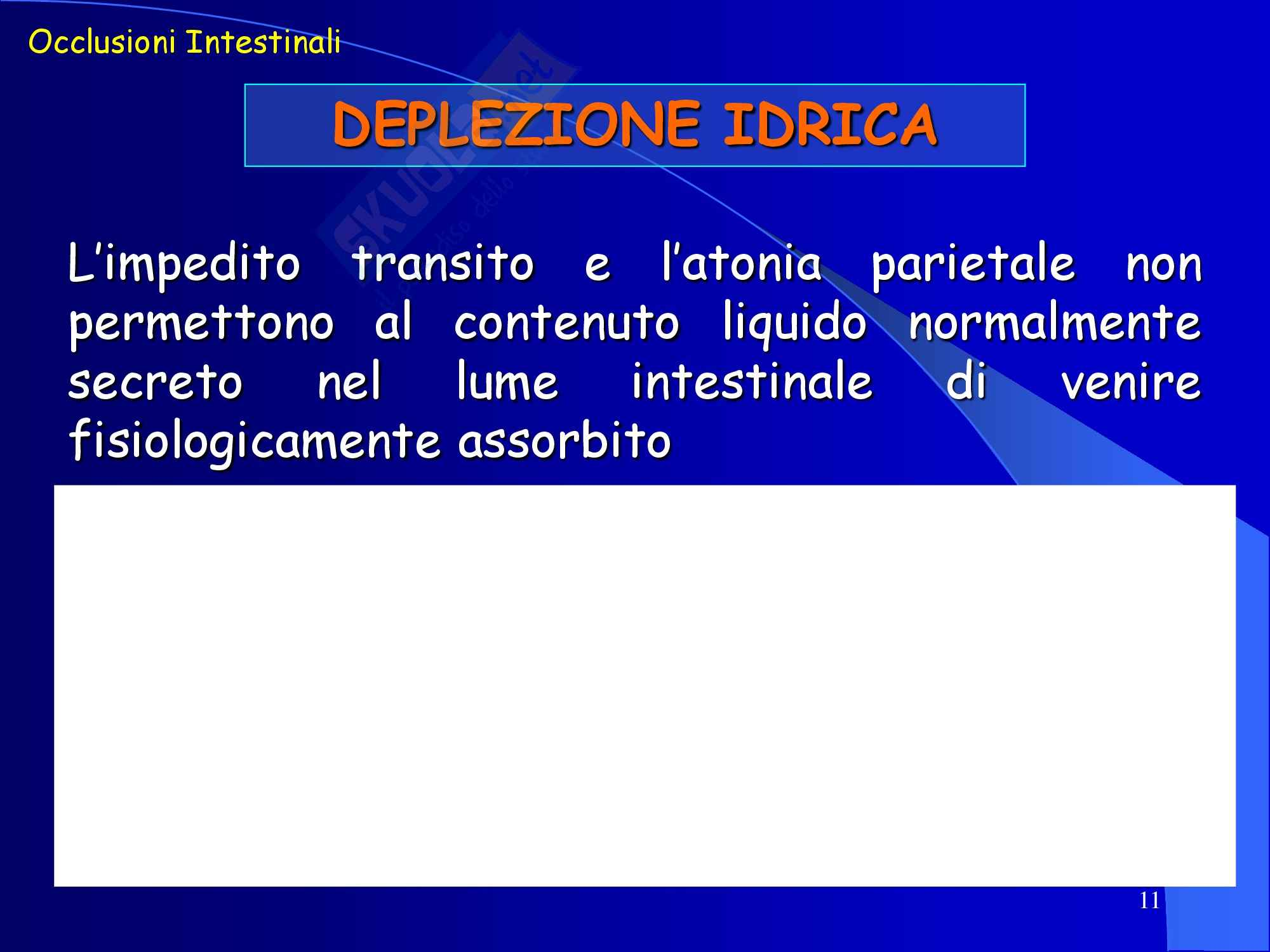 Occlusione Intestinale - parte 2 Pag. 11