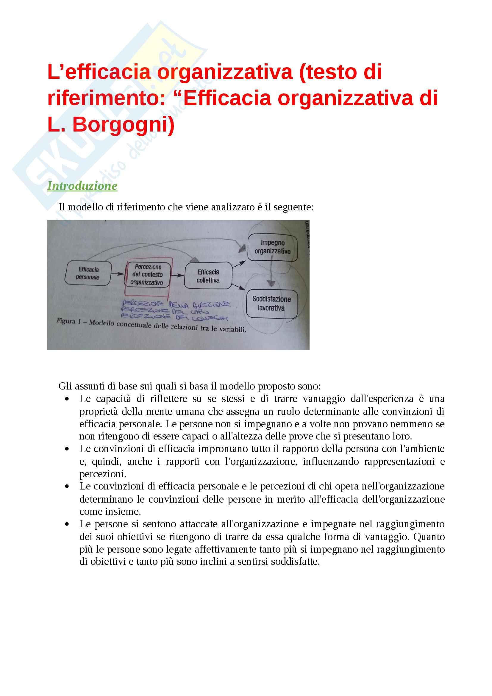 Efficacia individuale, collettiva, organizzativa