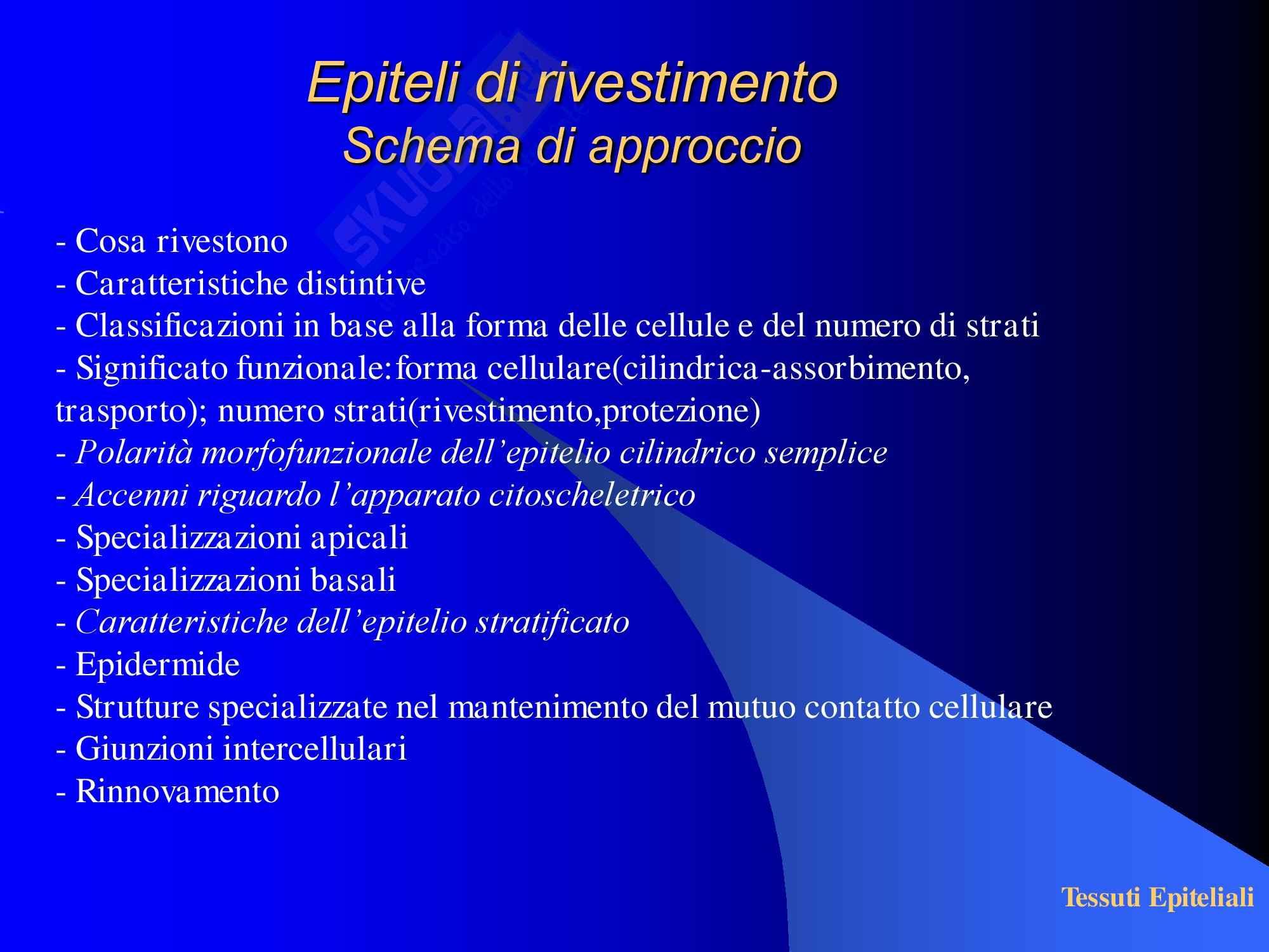 Tessuti Epiteliali Pag. 2
