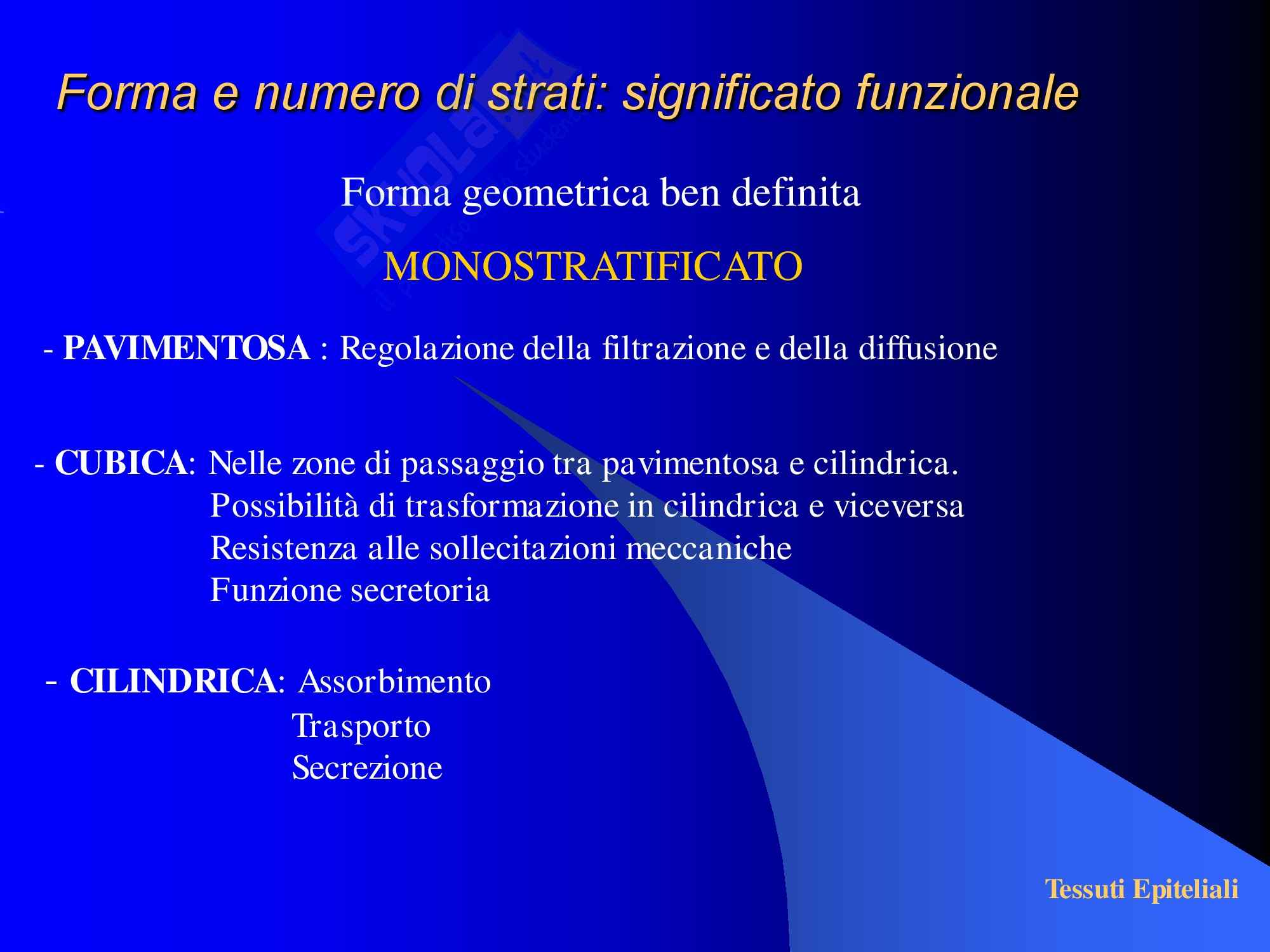 Tessuti Epiteliali Pag. 6
