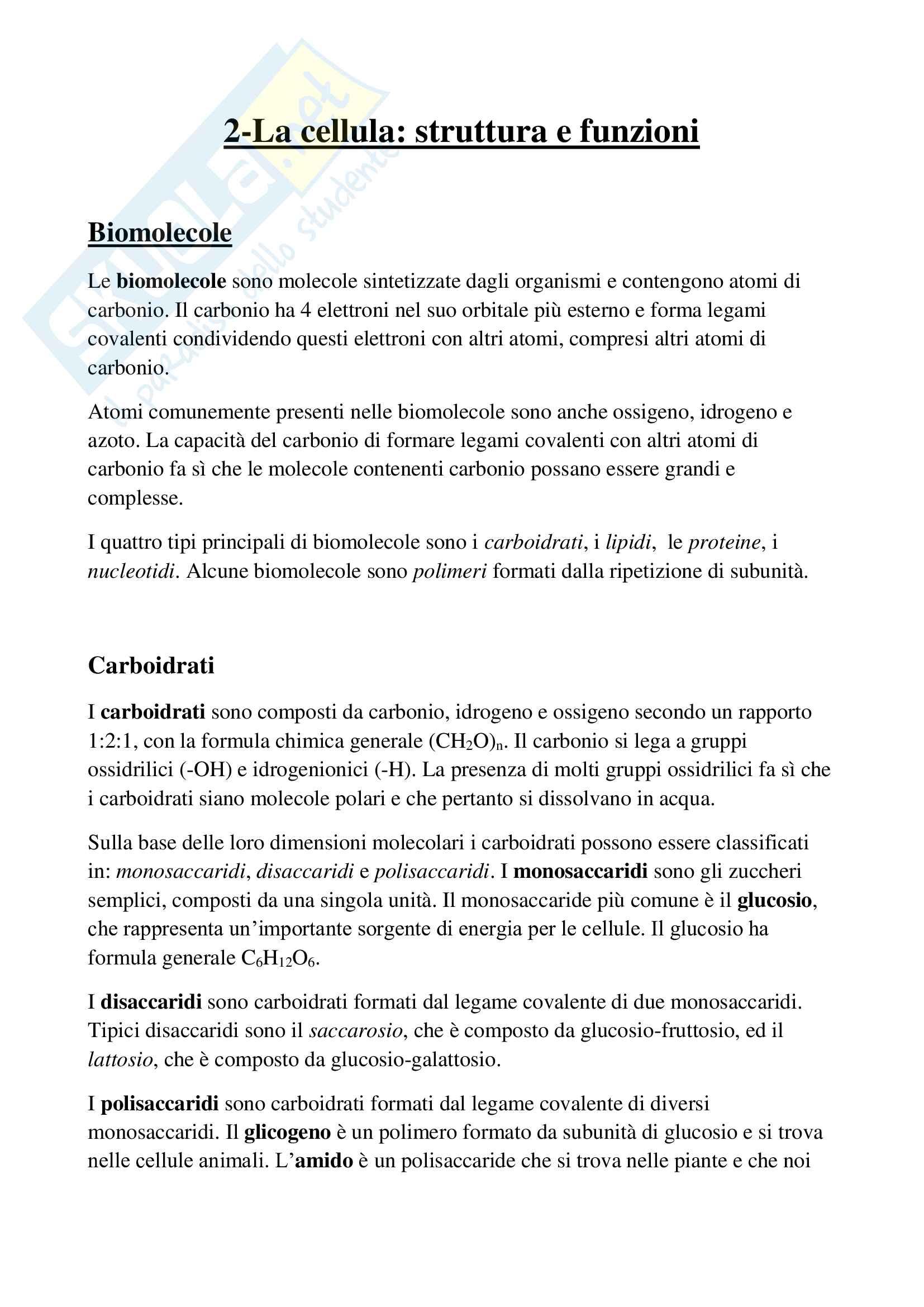 Appunti di Fondamenti di Biologia Anatomia e Fisiologia