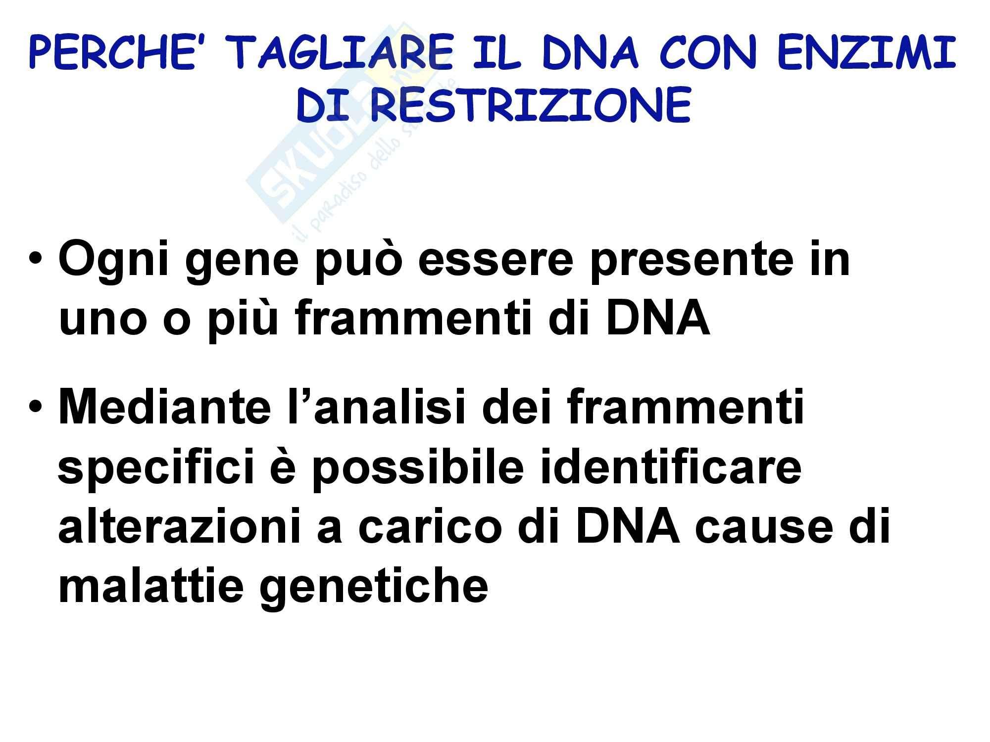 Biologia Molecolare Clinica Pag. 11