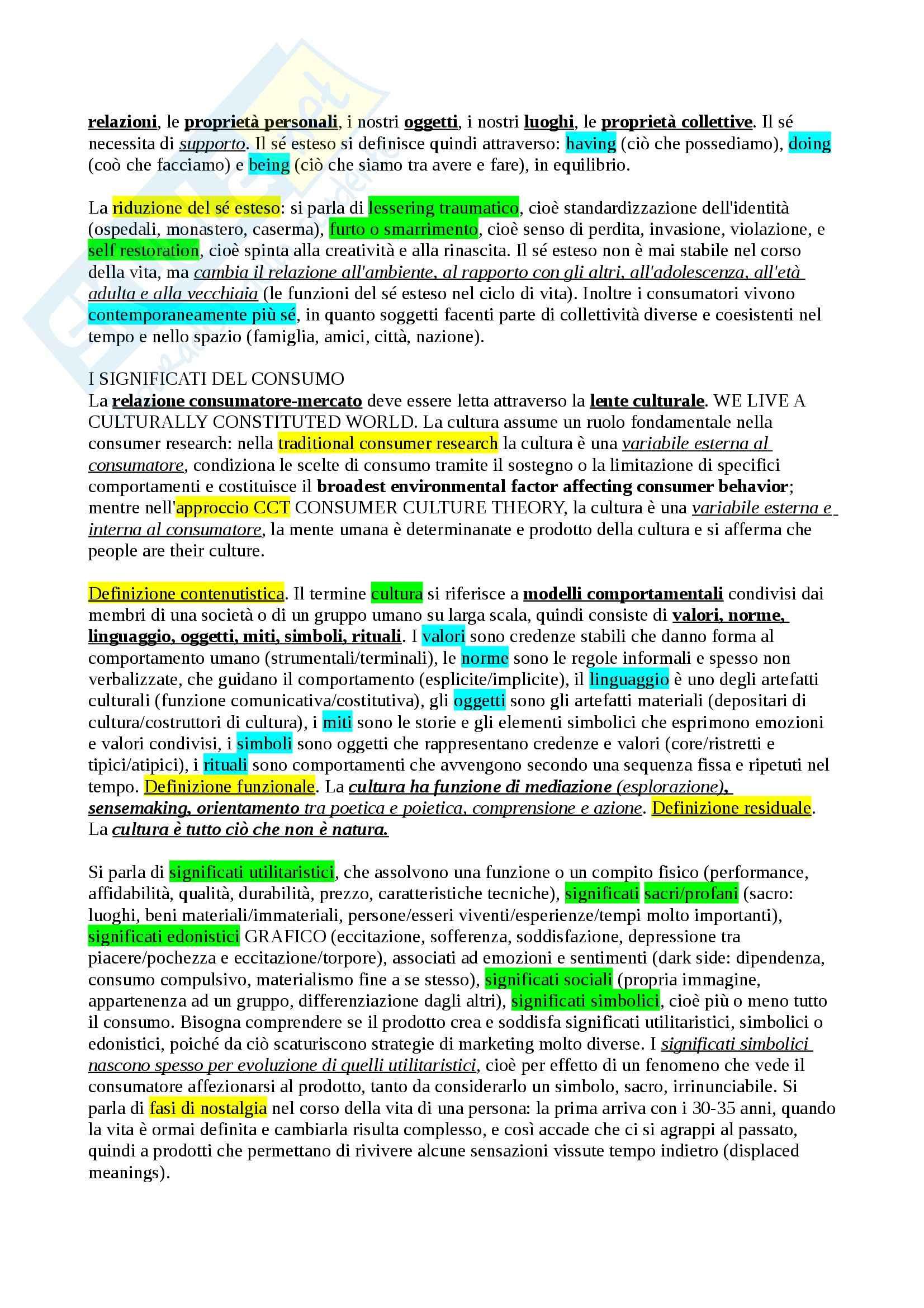 Riassunto esame Understanding Consumer 2, prof. Borghini Pag. 2
