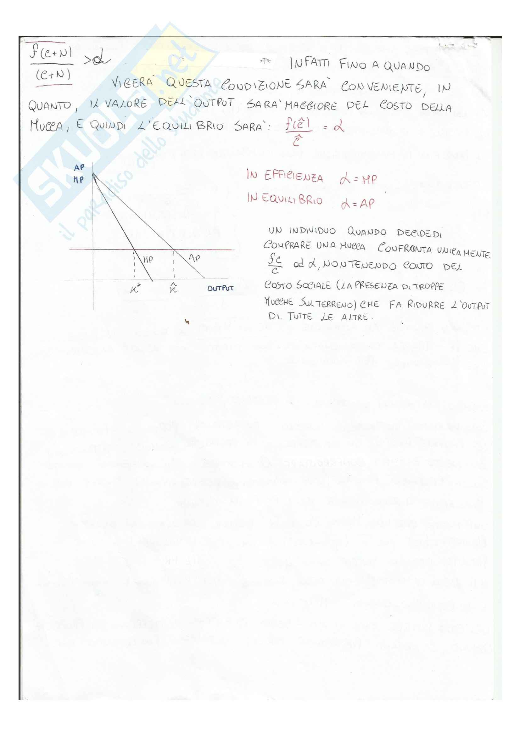 Microeconomia - Riassunto esame, prof. Martina Pag. 51