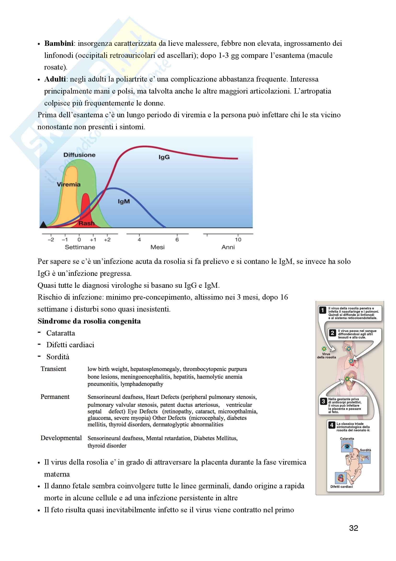Microbiologia Pag. 31