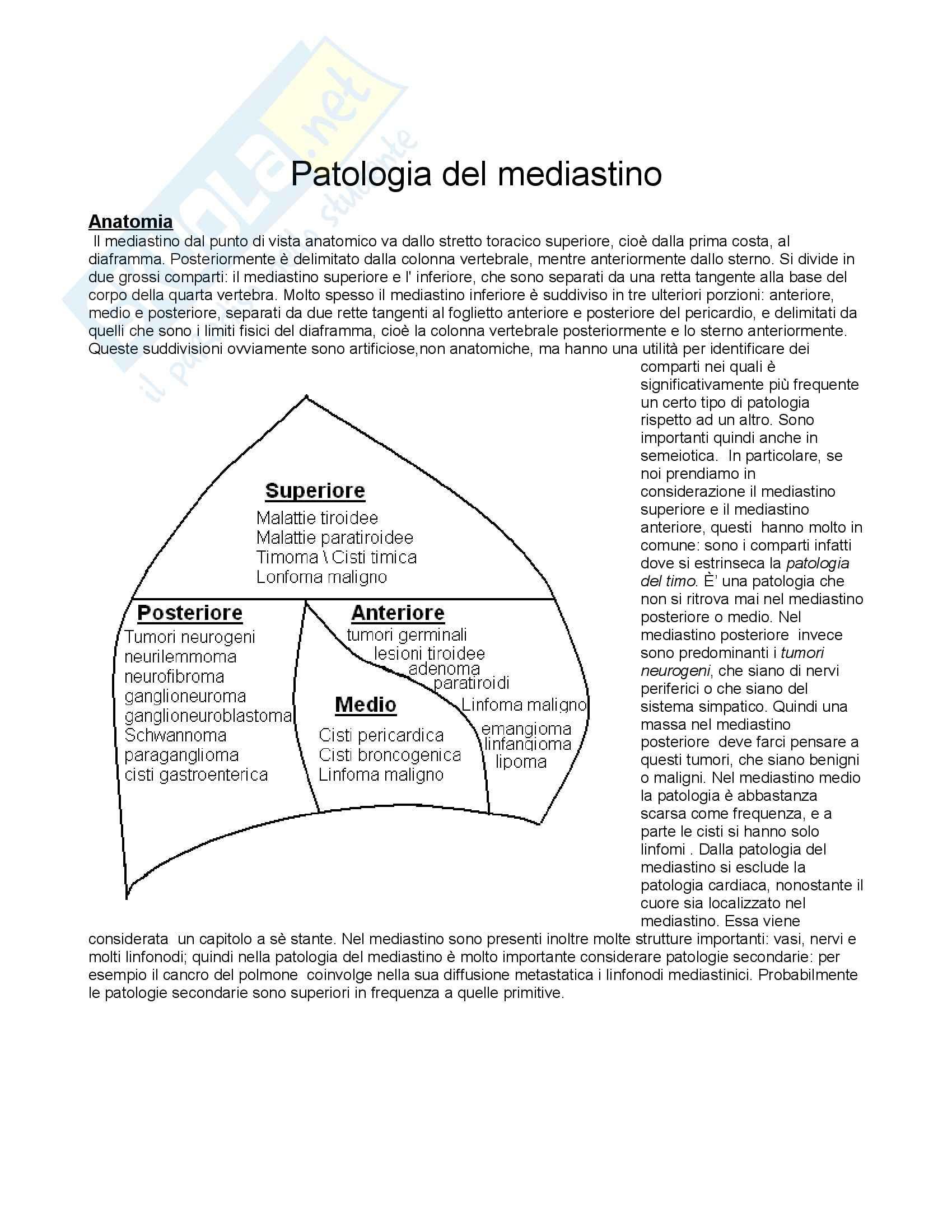 Anatomia Patologica - Patologia mediastinica