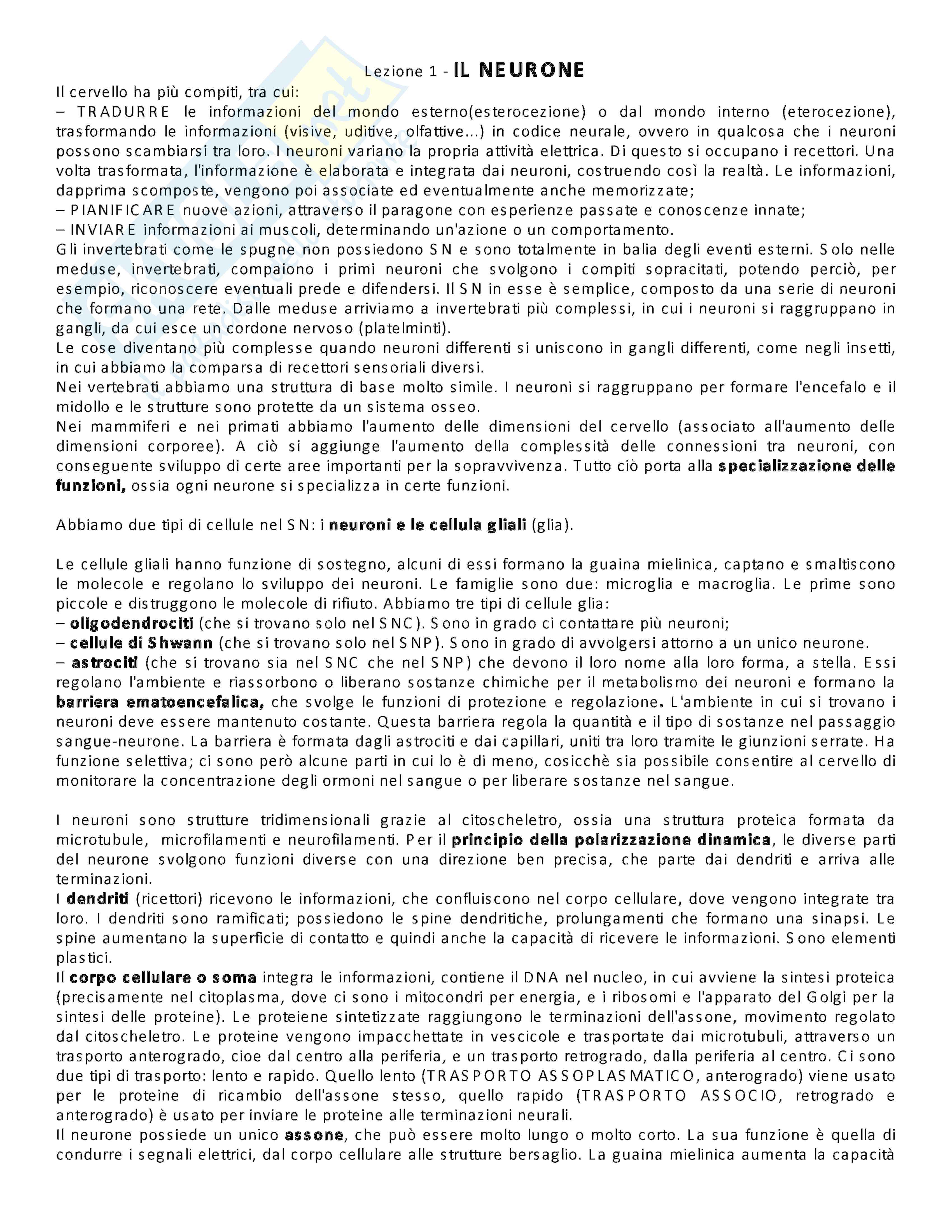 Appunti lezione di Neuroscienze - Università di Torino