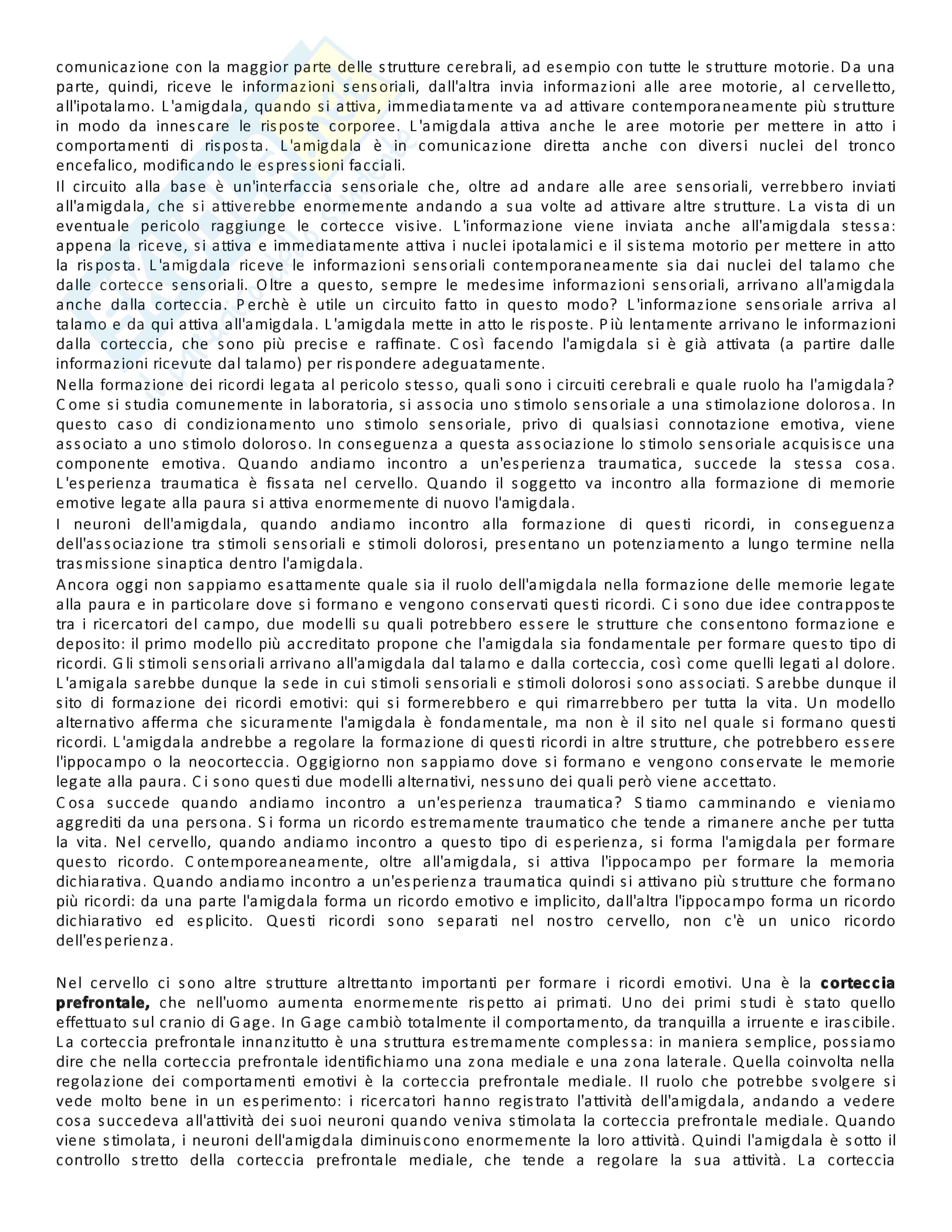 Appunti lezione di Neuroscienze - Università di Torino Pag. 41