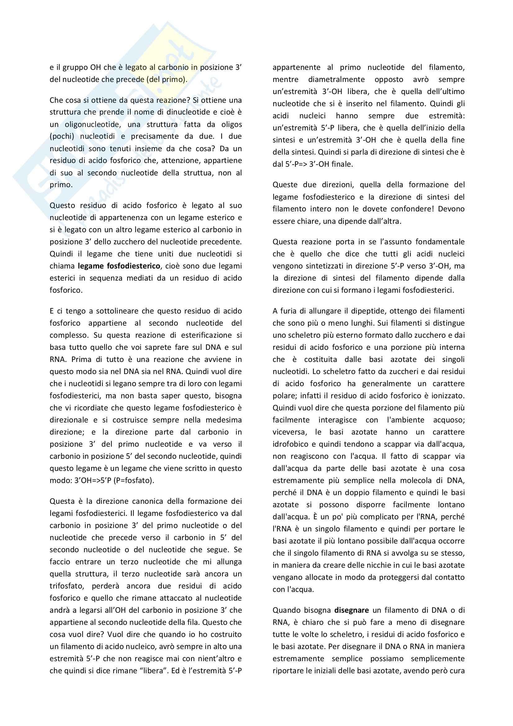 Biologia cellulare - il dogma centrale della biologia e la struttura del DNA Pag. 6