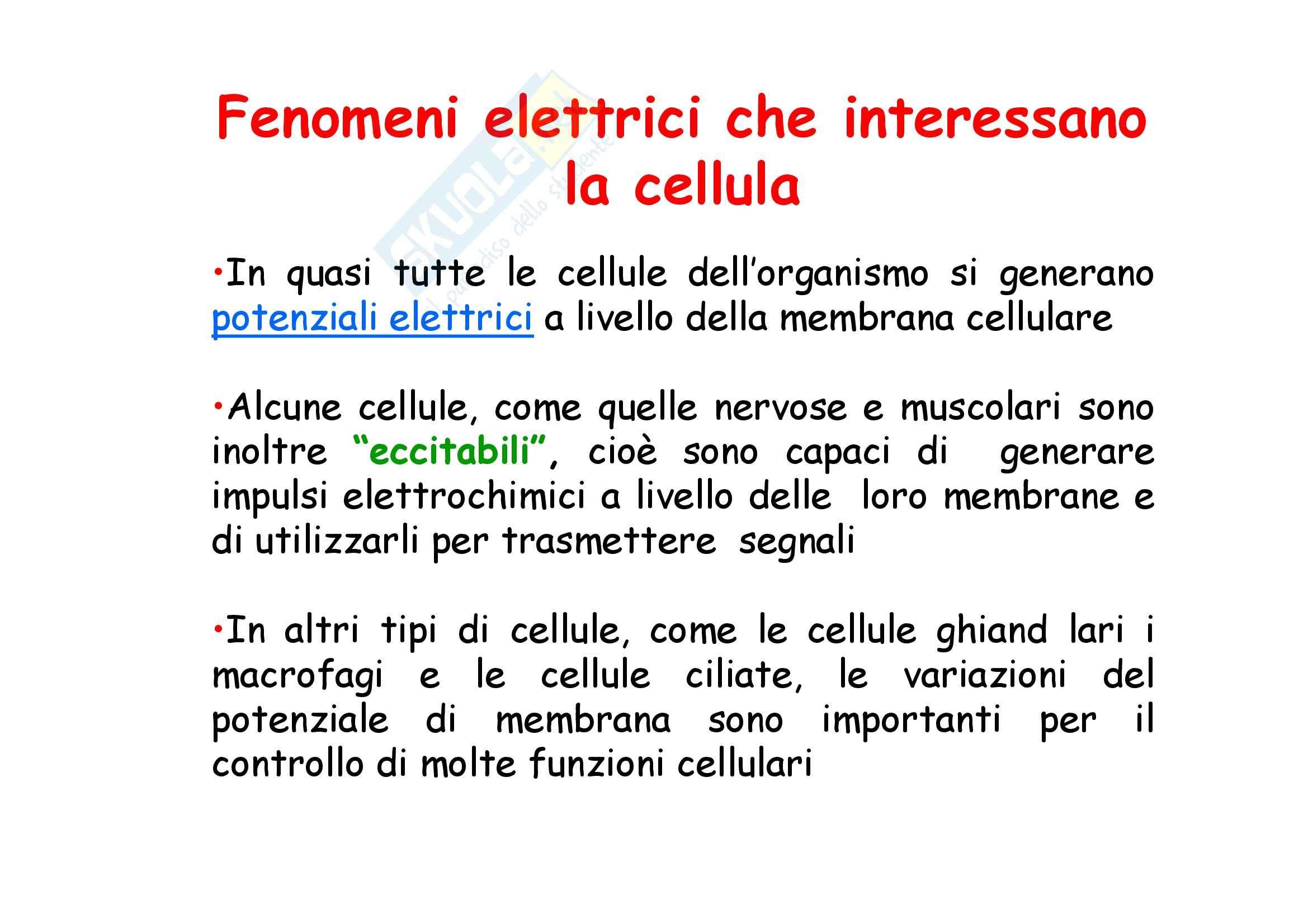 Fisiologia - fenomeni elettrici che interessano la cellula
