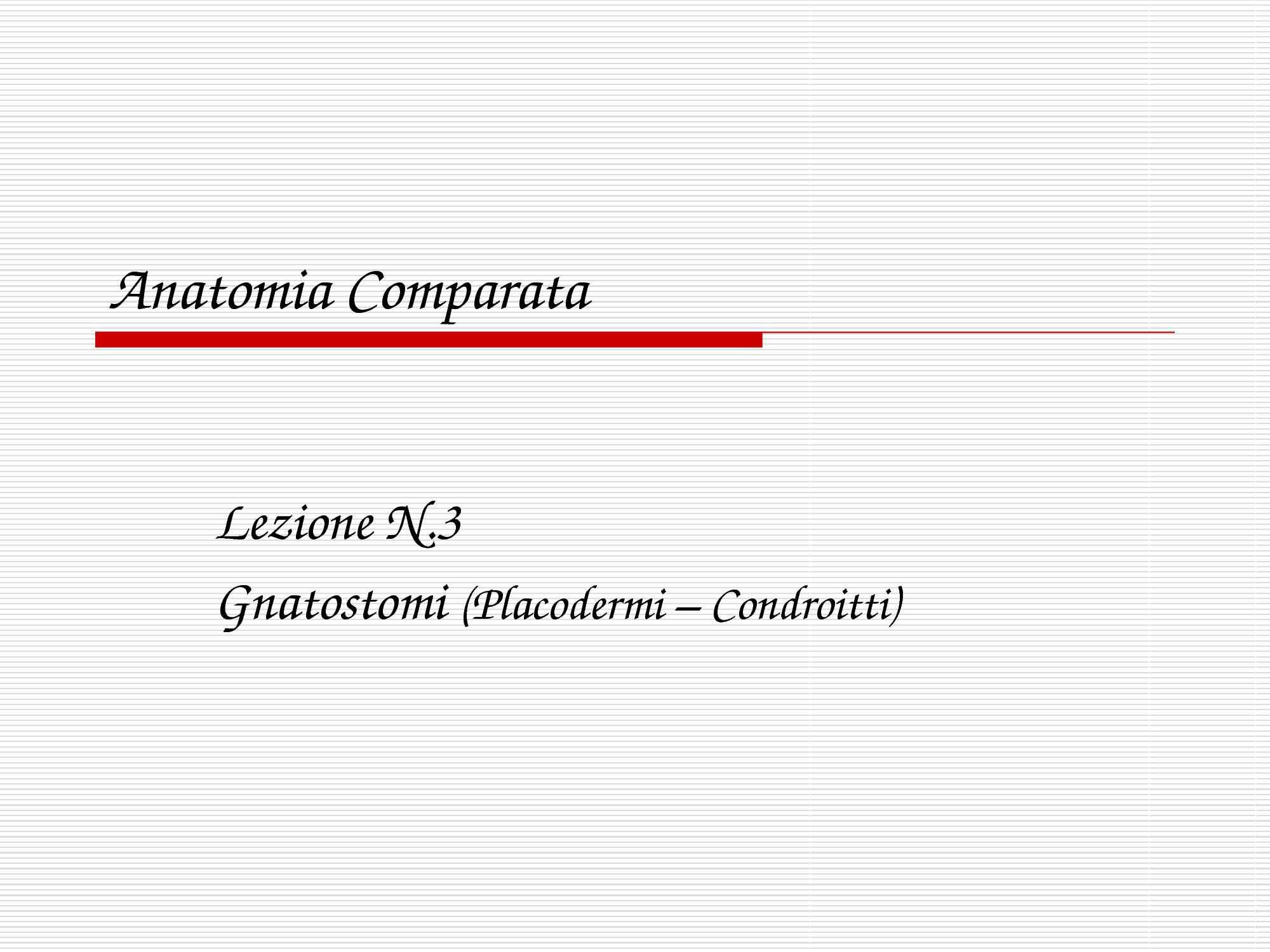 Gnatostomi - Caratteristiche e anatomia