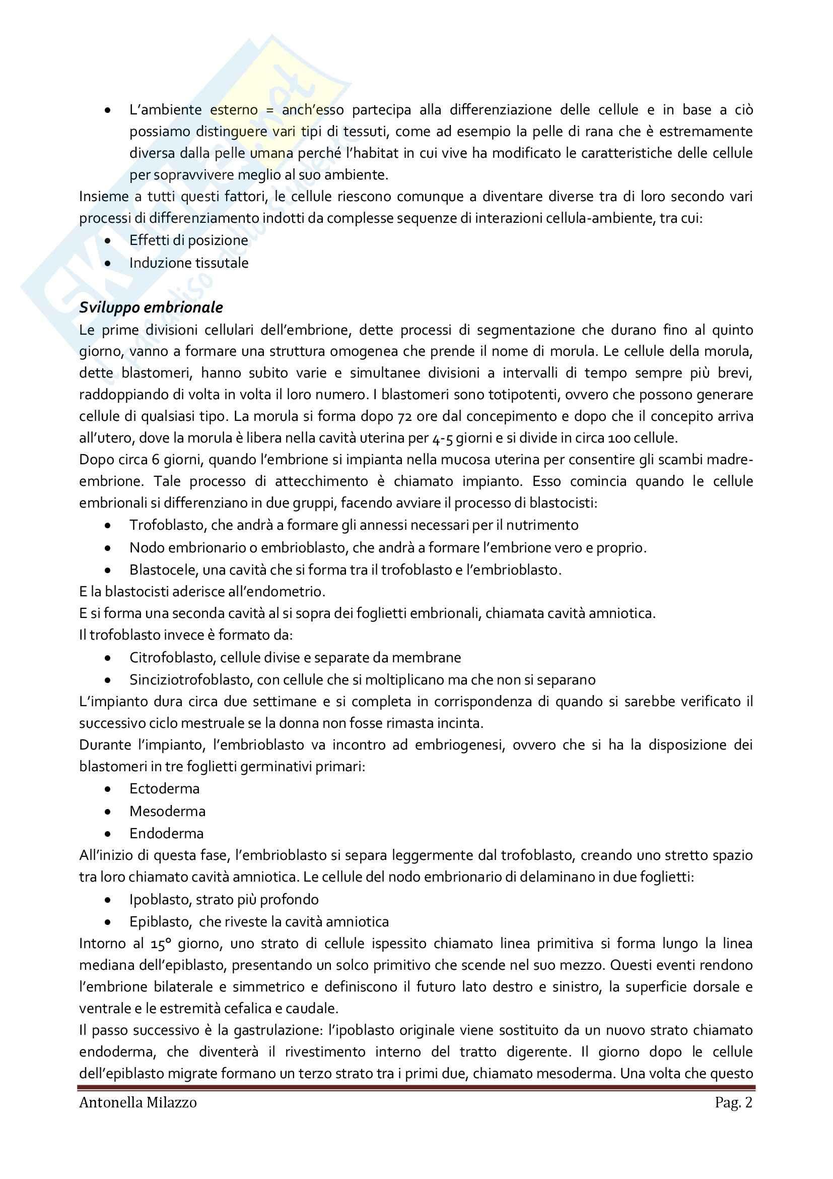 Istologia, Anatomia e fisiologia Pag. 2