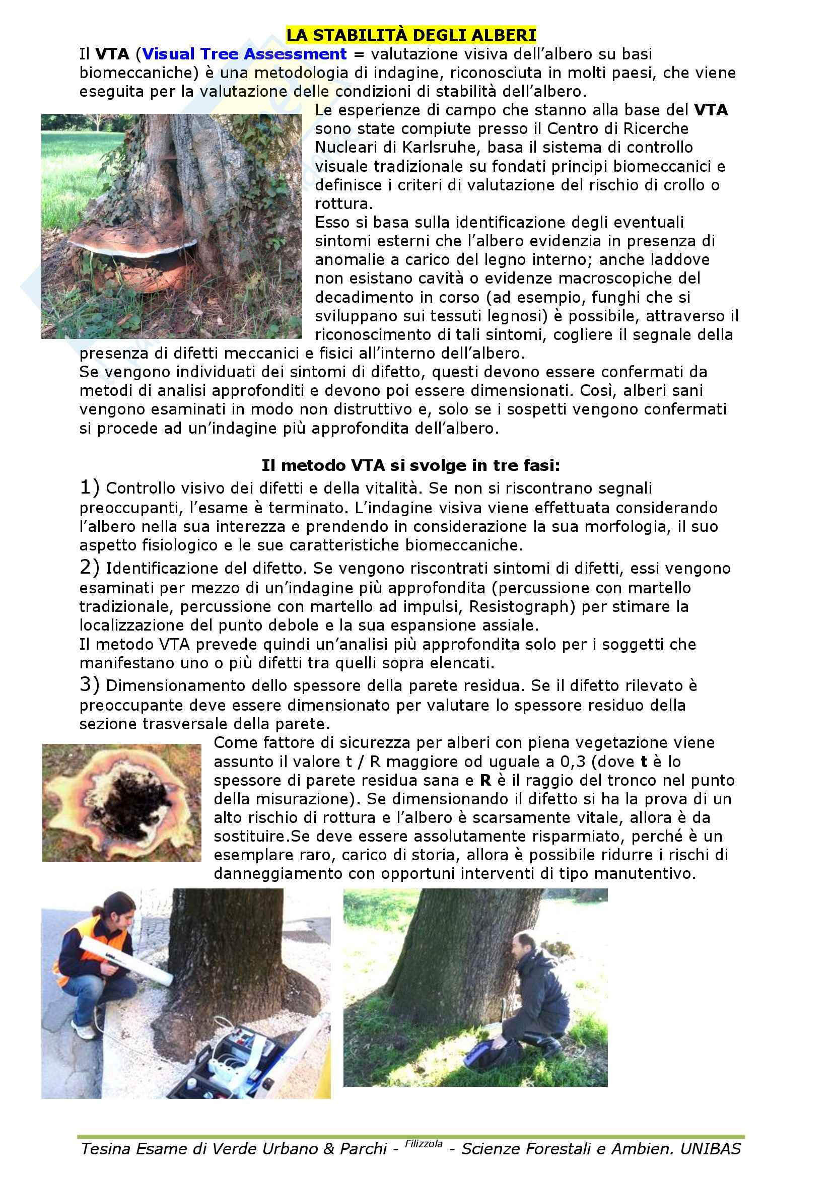 Selvicoltura - il verde urbano Pag. 46