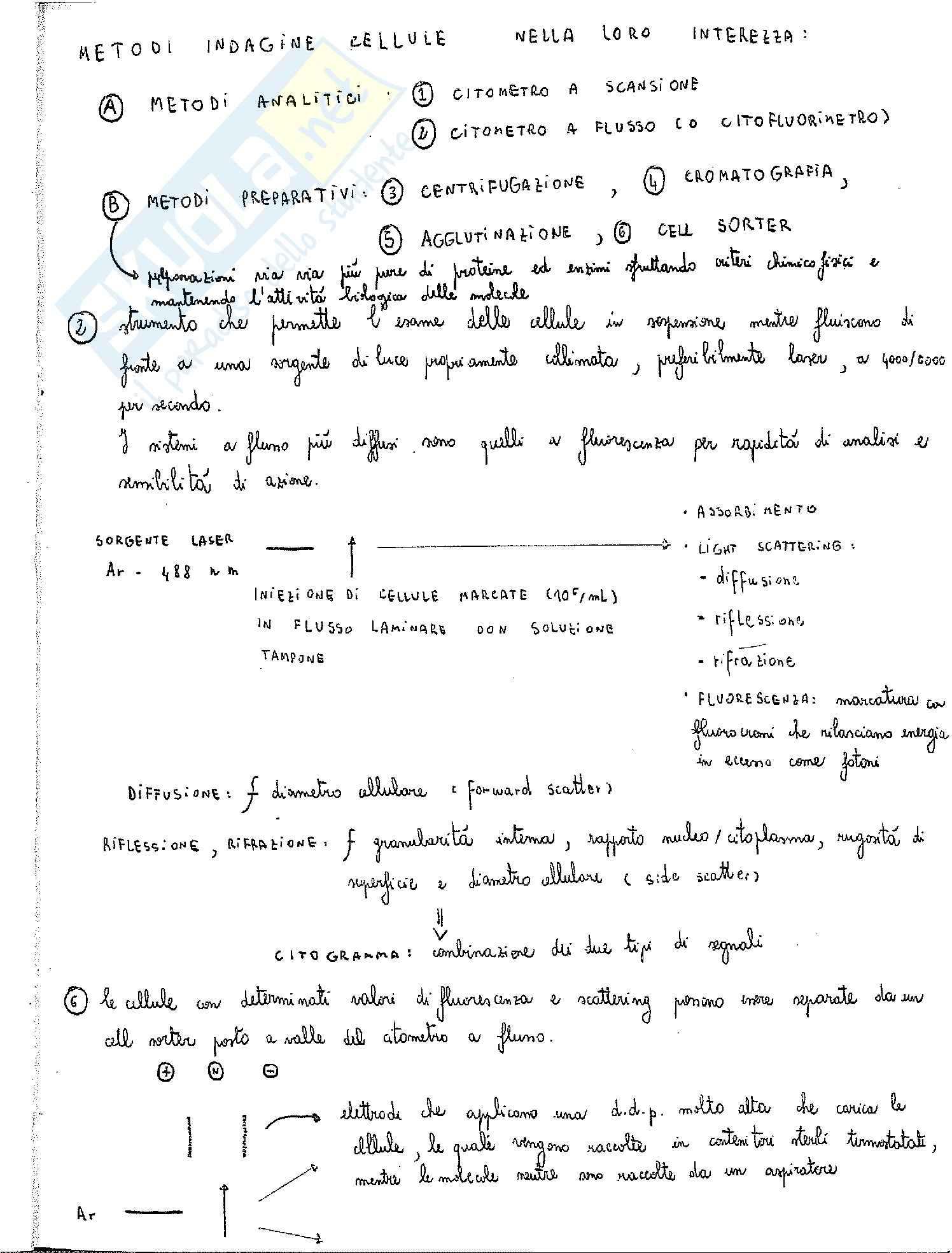 Esperimenti: Appunti di Biochimica Applicata
