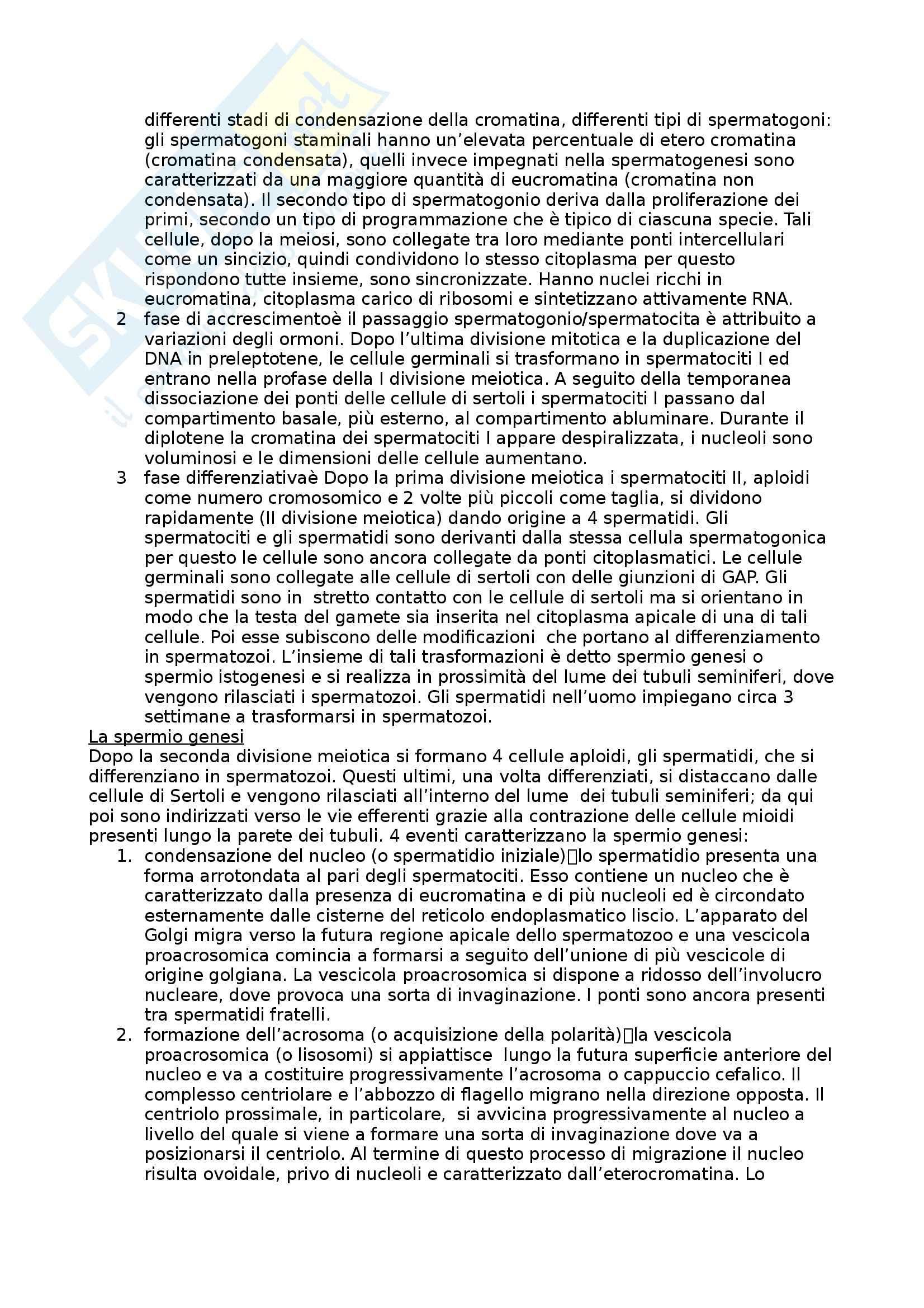 Riassunto esame Biologia dello sviluppo, prof. Moreno, libro consigliato Biologia dello sviluppo Pag. 6