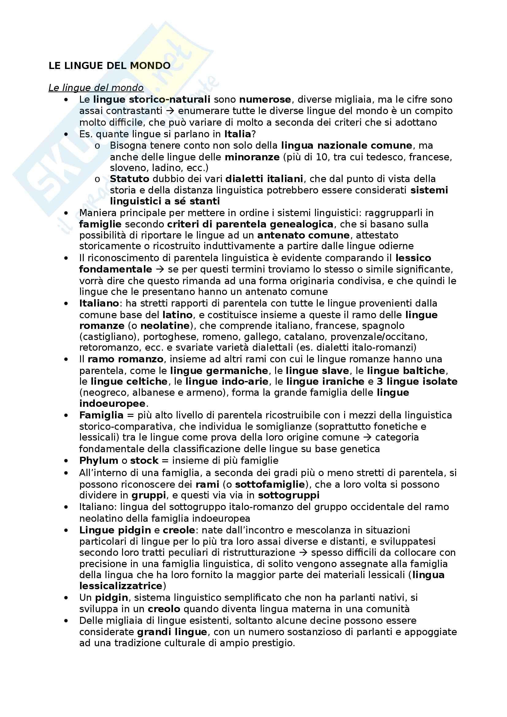 Riassunto esame Glottologia, prof. Bonfadini, libro consigliato La Linguistica: Un Corso Introduttivo, Berruto, Cerruti - cap 6