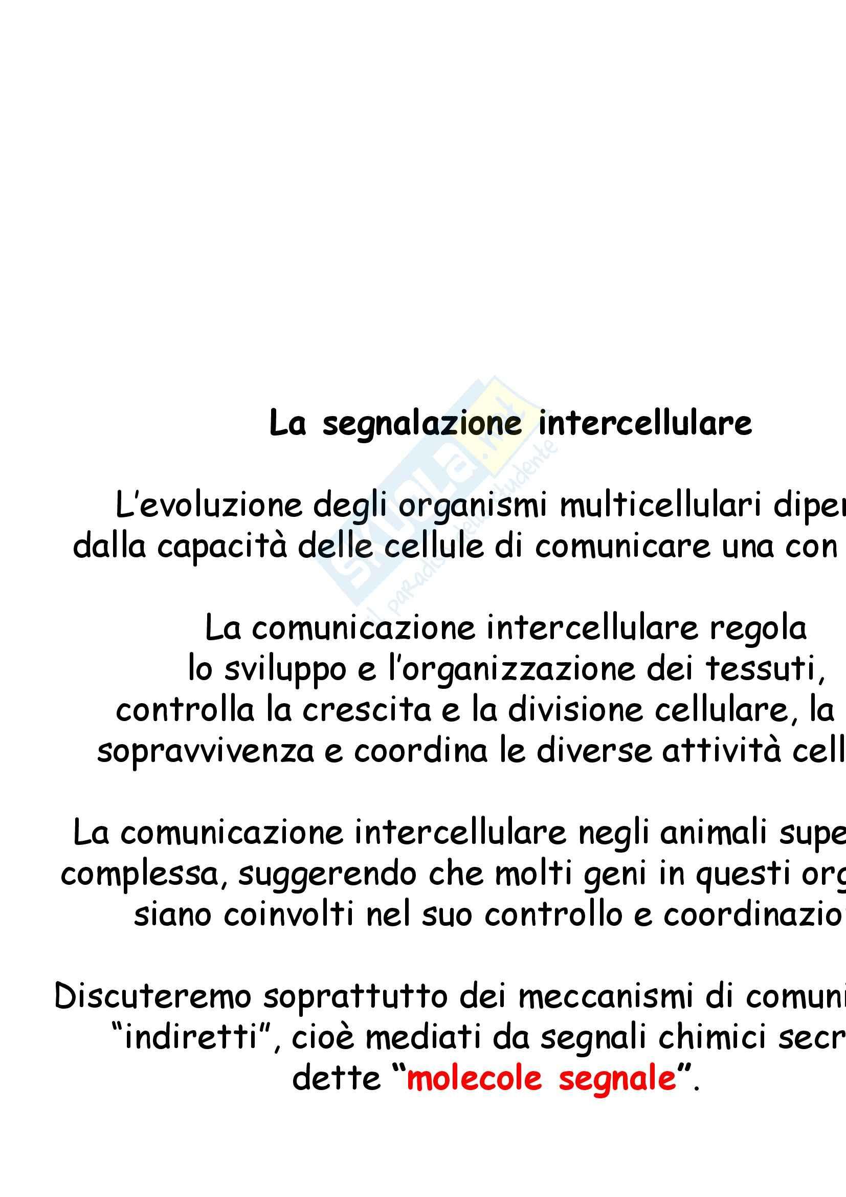 appunto P. De Filippi Biologia cellulare