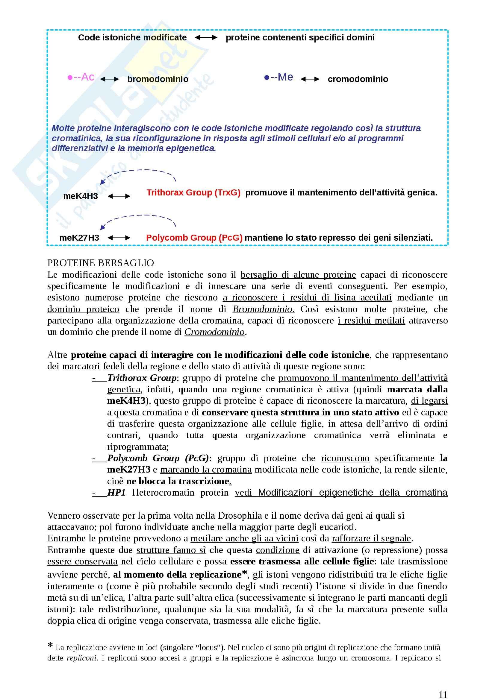 Lezioni, Genetica medica Pag. 11