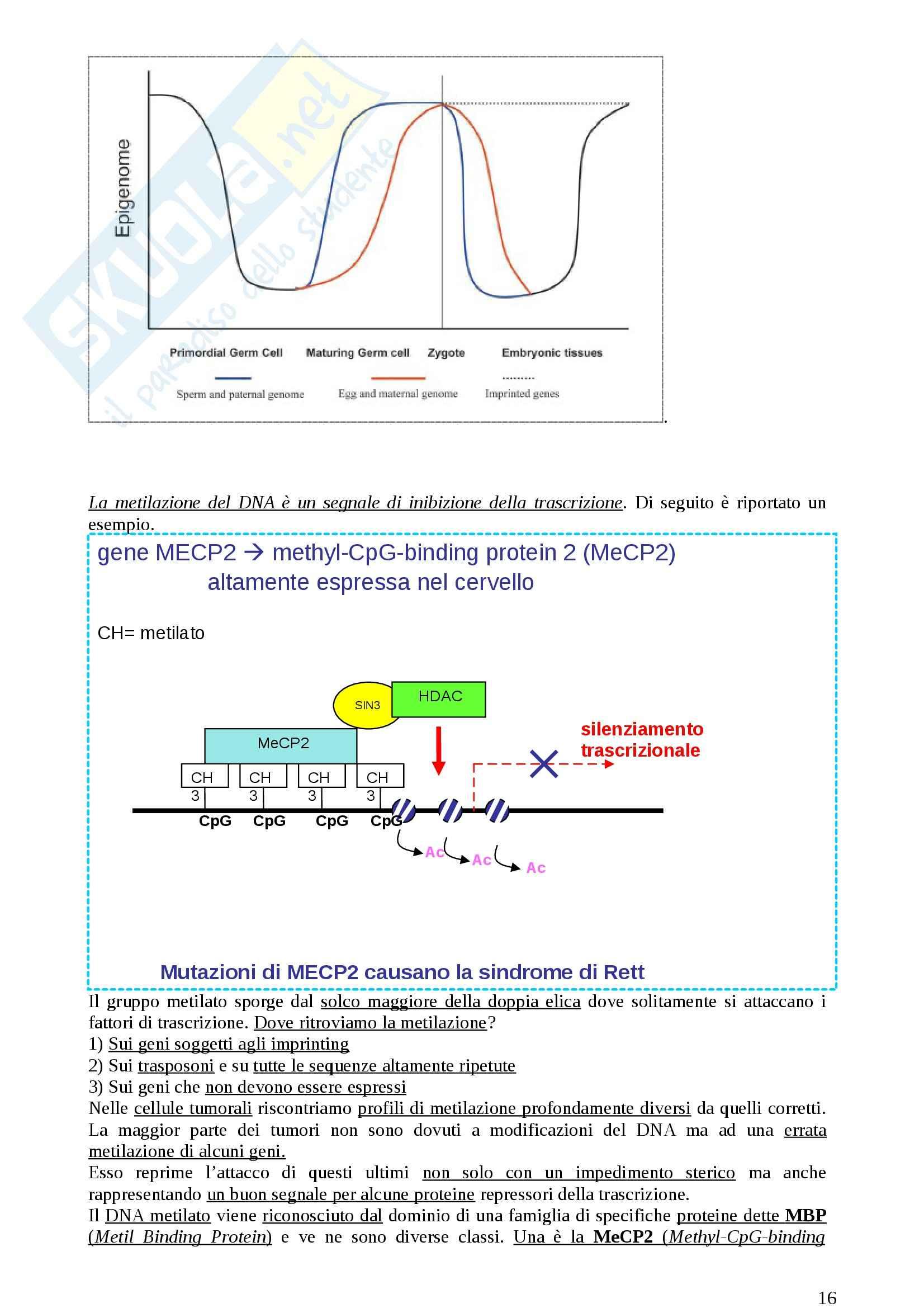 Lezioni, Genetica medica Pag. 16