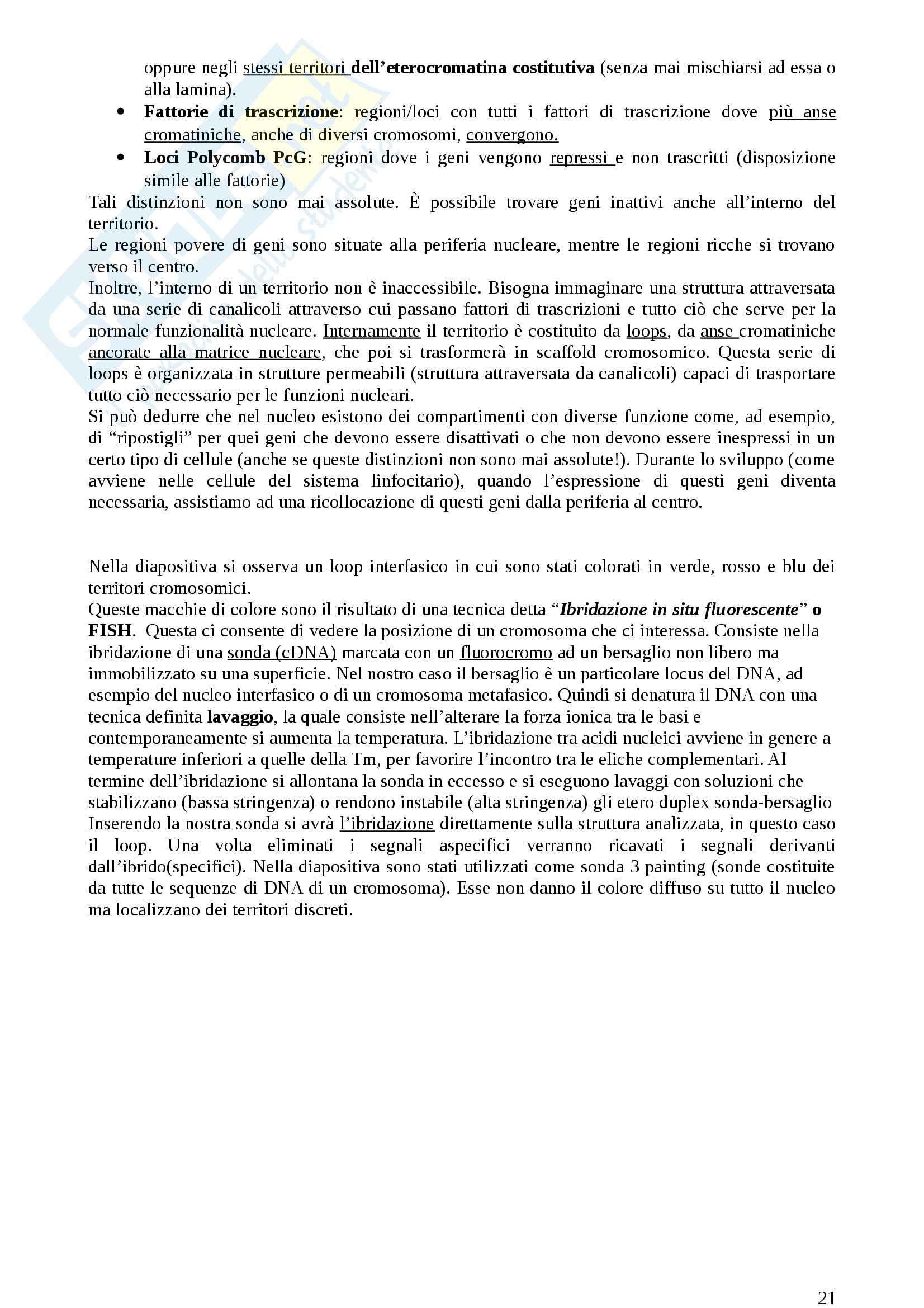 Lezioni, Genetica medica Pag. 21