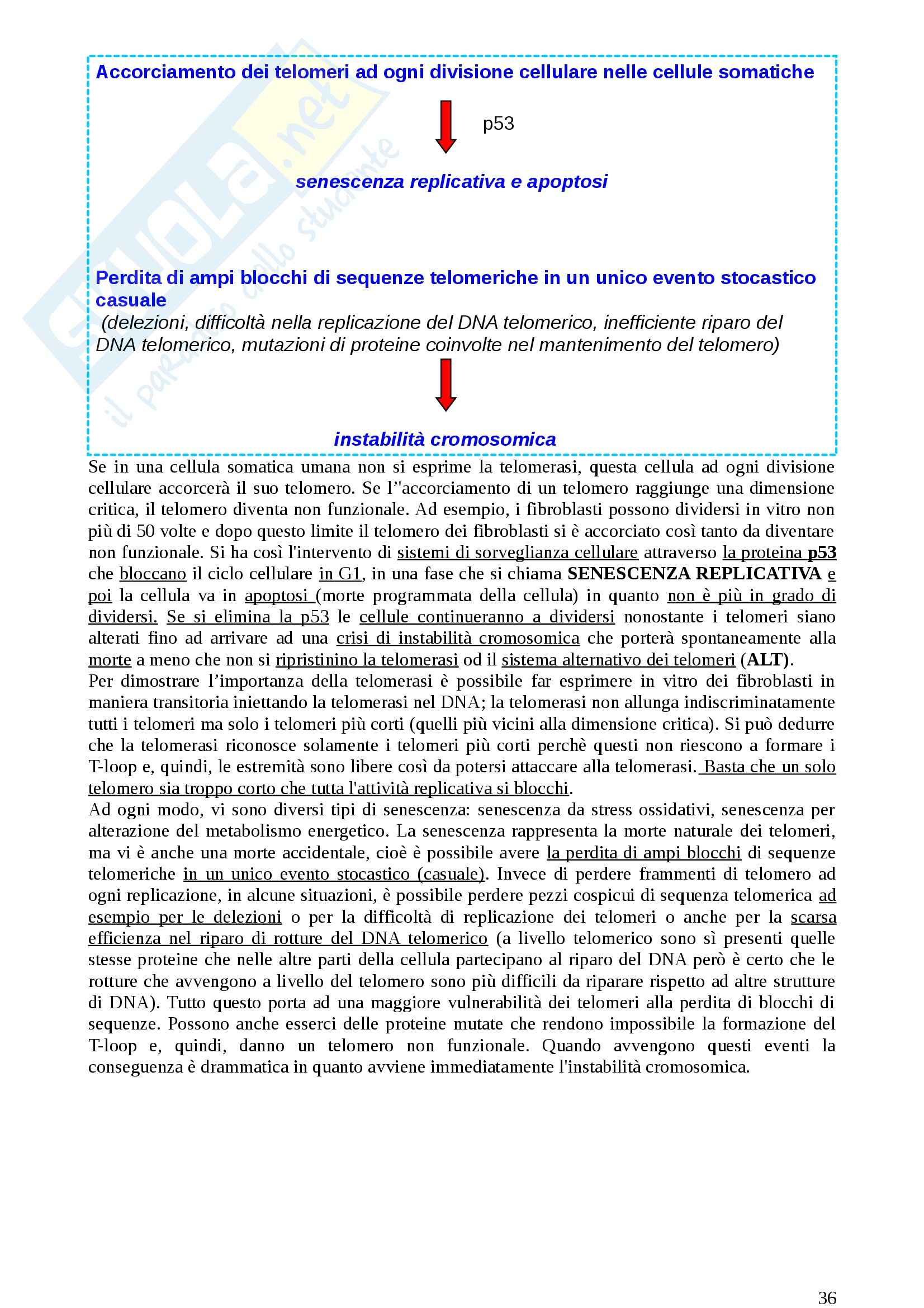 Lezioni, Genetica medica Pag. 36