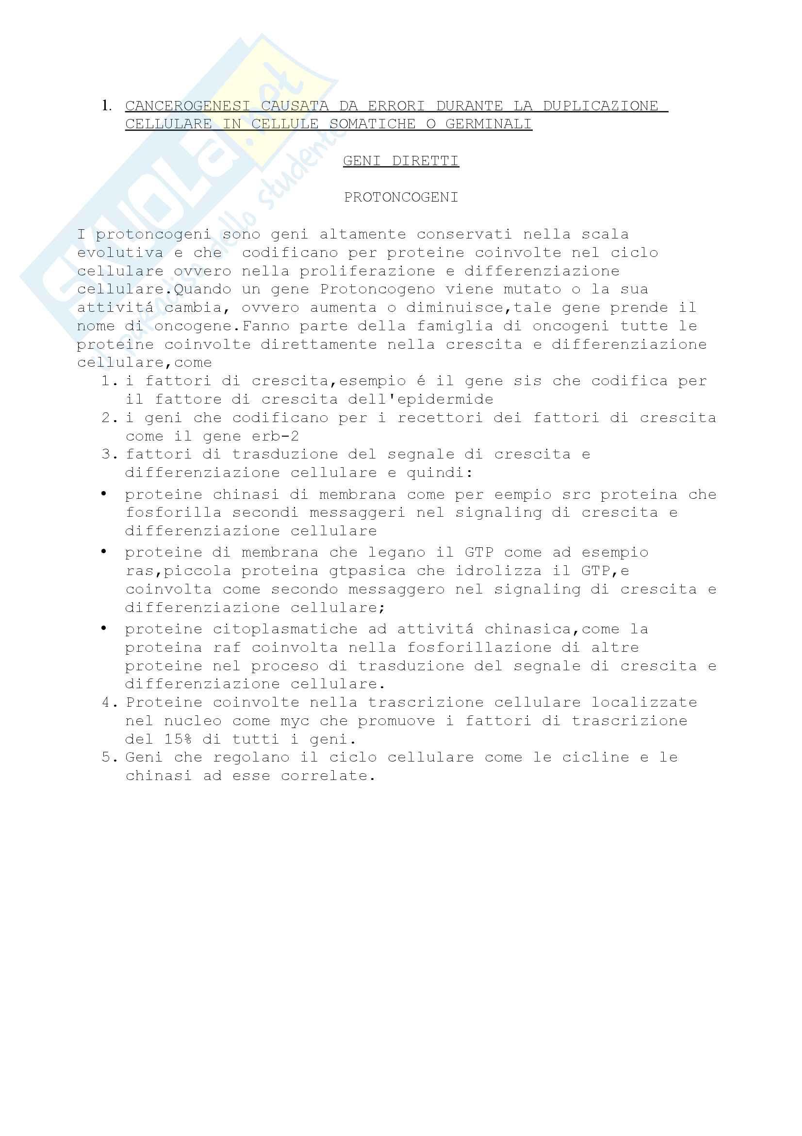 Cancerogenesi Pag. 2