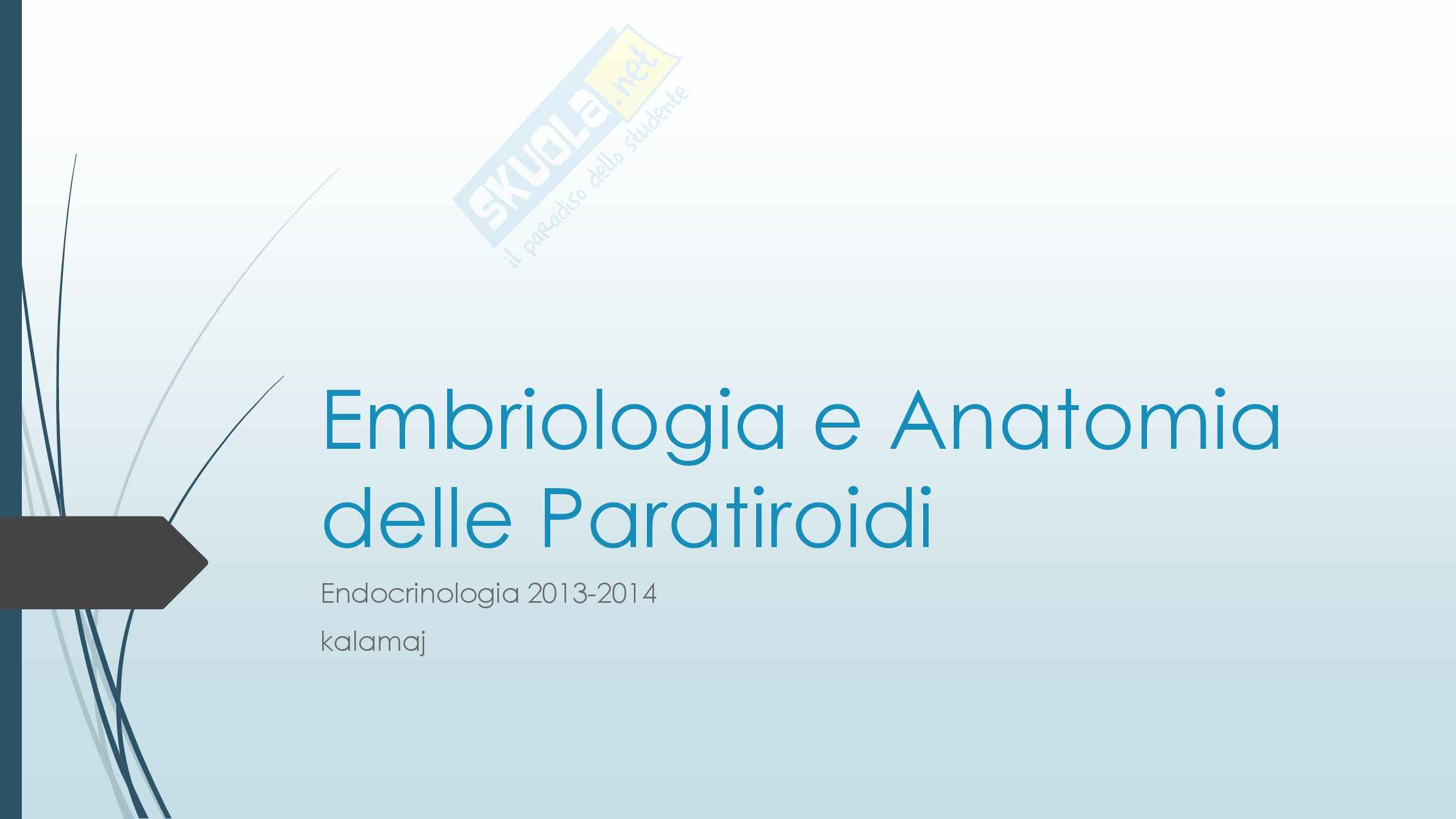 Endocrinologia - Embriologia e Anatomia delle Paratiroidi
