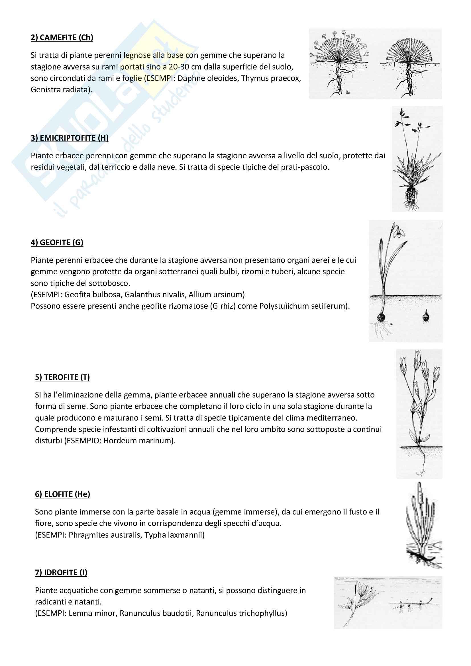 Ecologia vegetale e geobotanica Pag. 26