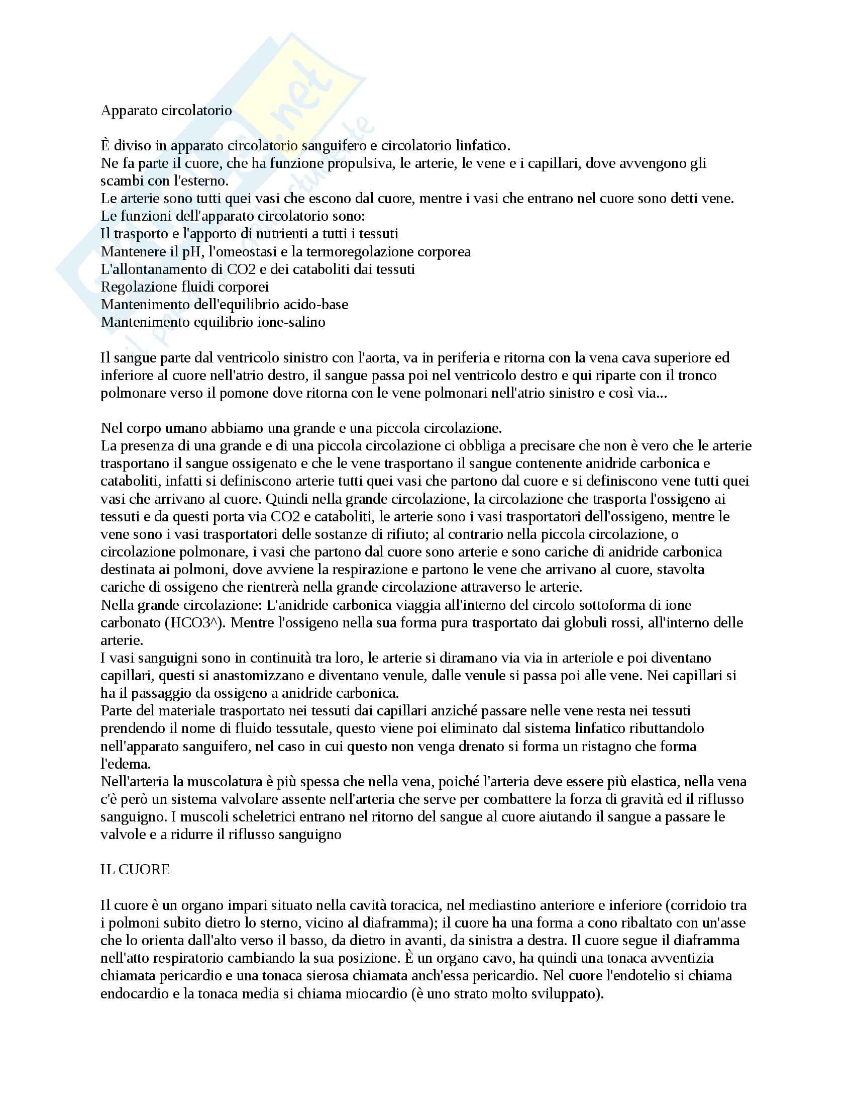 Anatomia - Apparato circolatorio