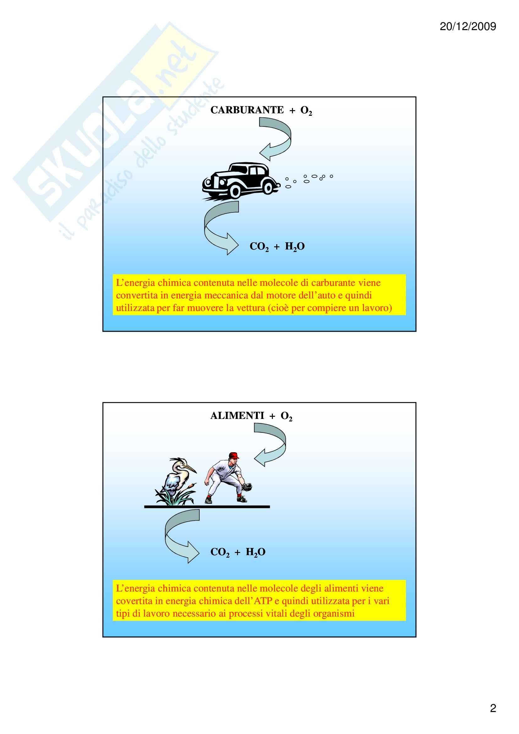 Biochimica I – Metabolismo – Slides Pag. 2