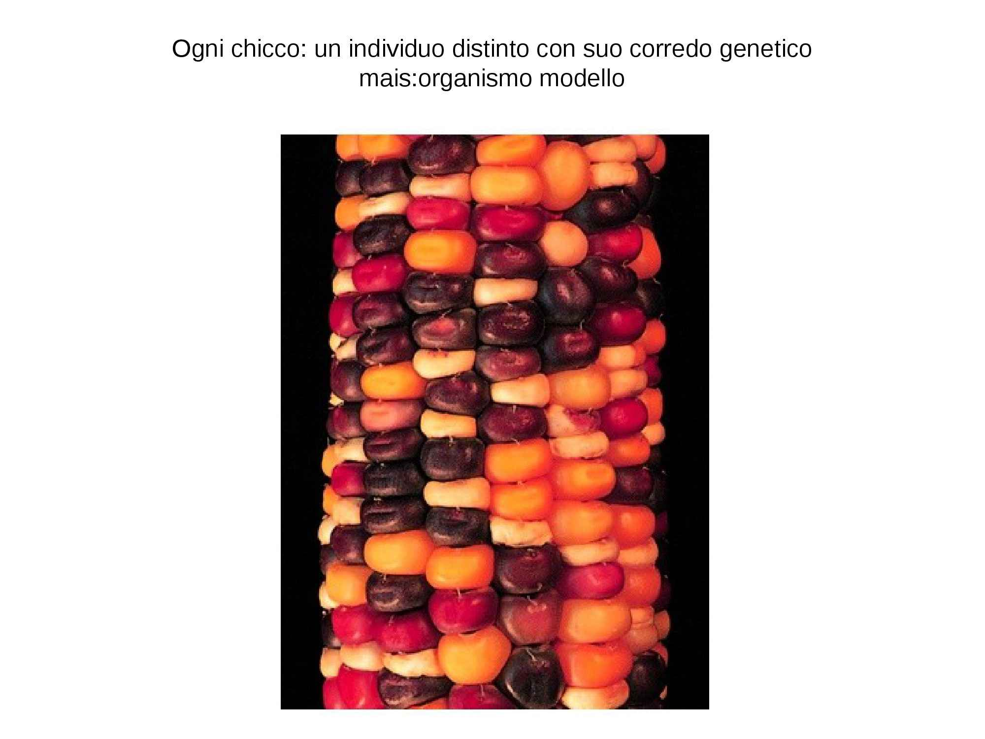 dispensa A. Poma GENETICA VEGETALE