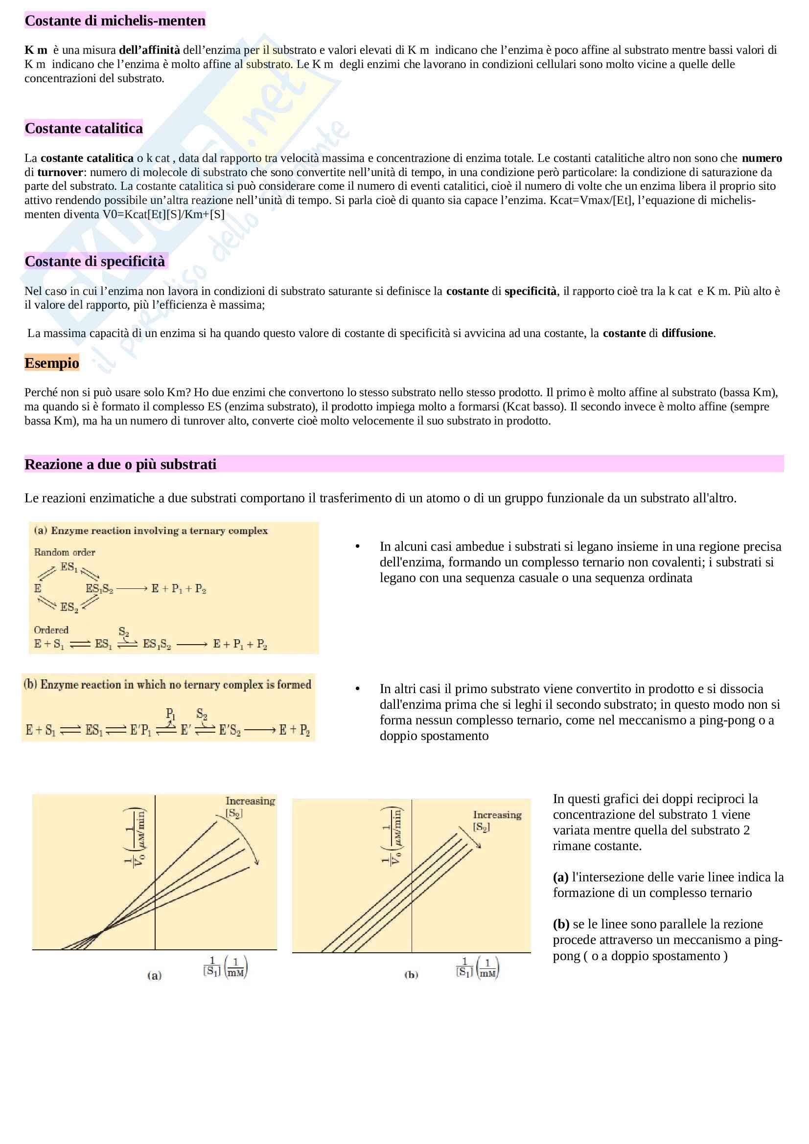 """Appunti biochimica umana, testo di riferimento """"Principi di biochimica di Lehninger"""" Pag. 16"""