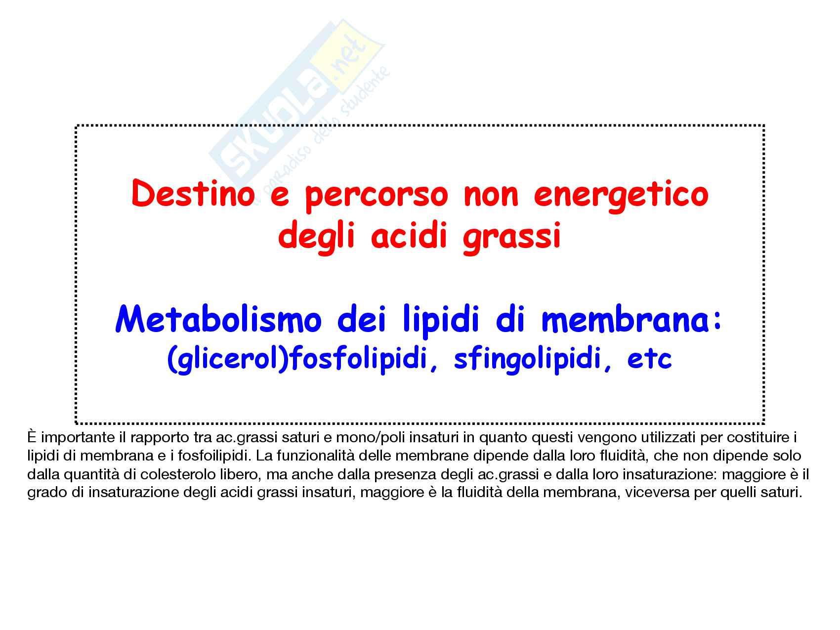 14 Metabolismo dei lipidi di membrana