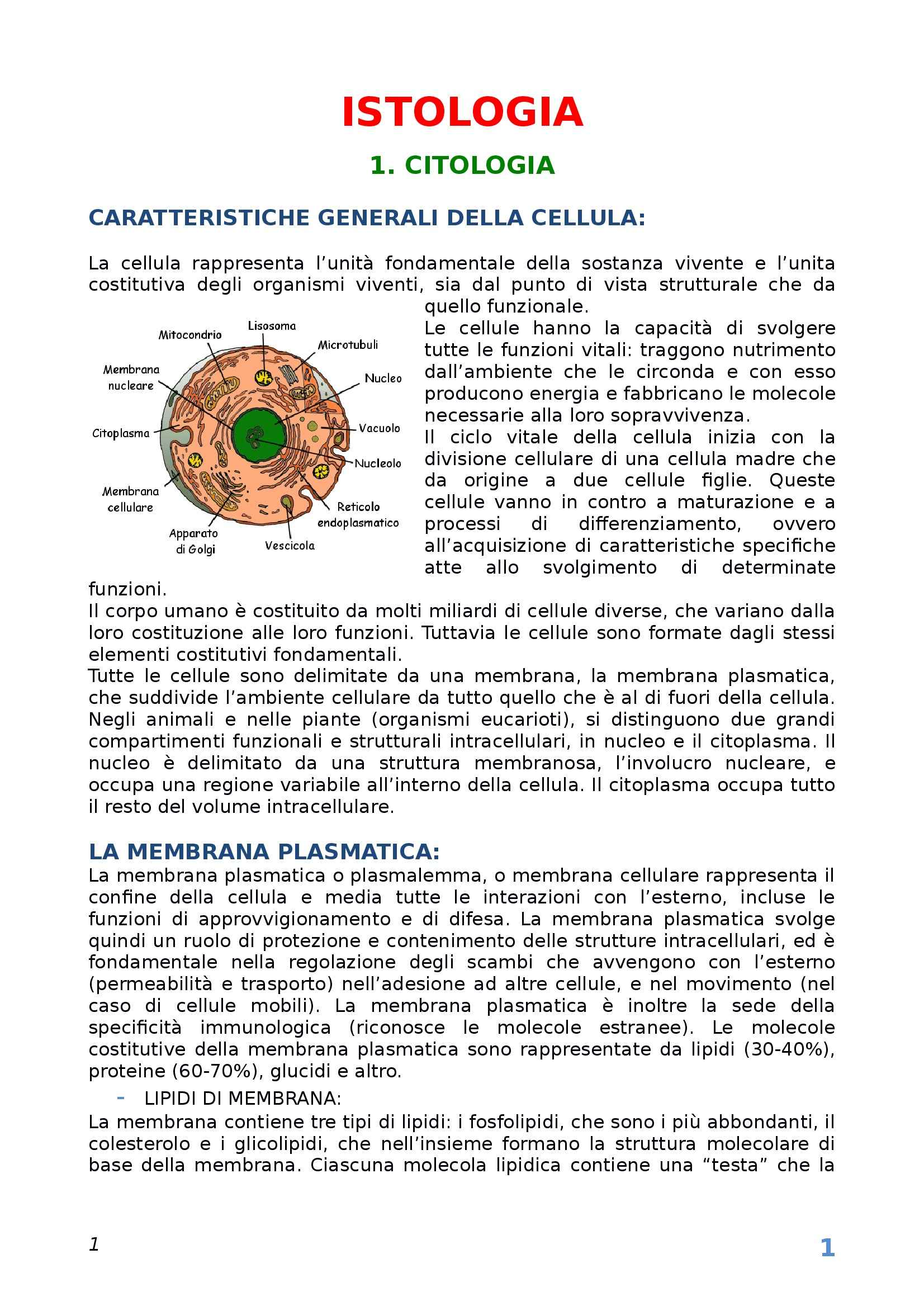 Istologia - Appunti Pag. 1