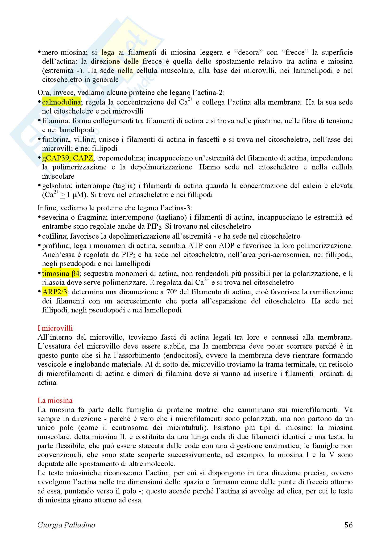 Biologia Cellulare Pag. 56