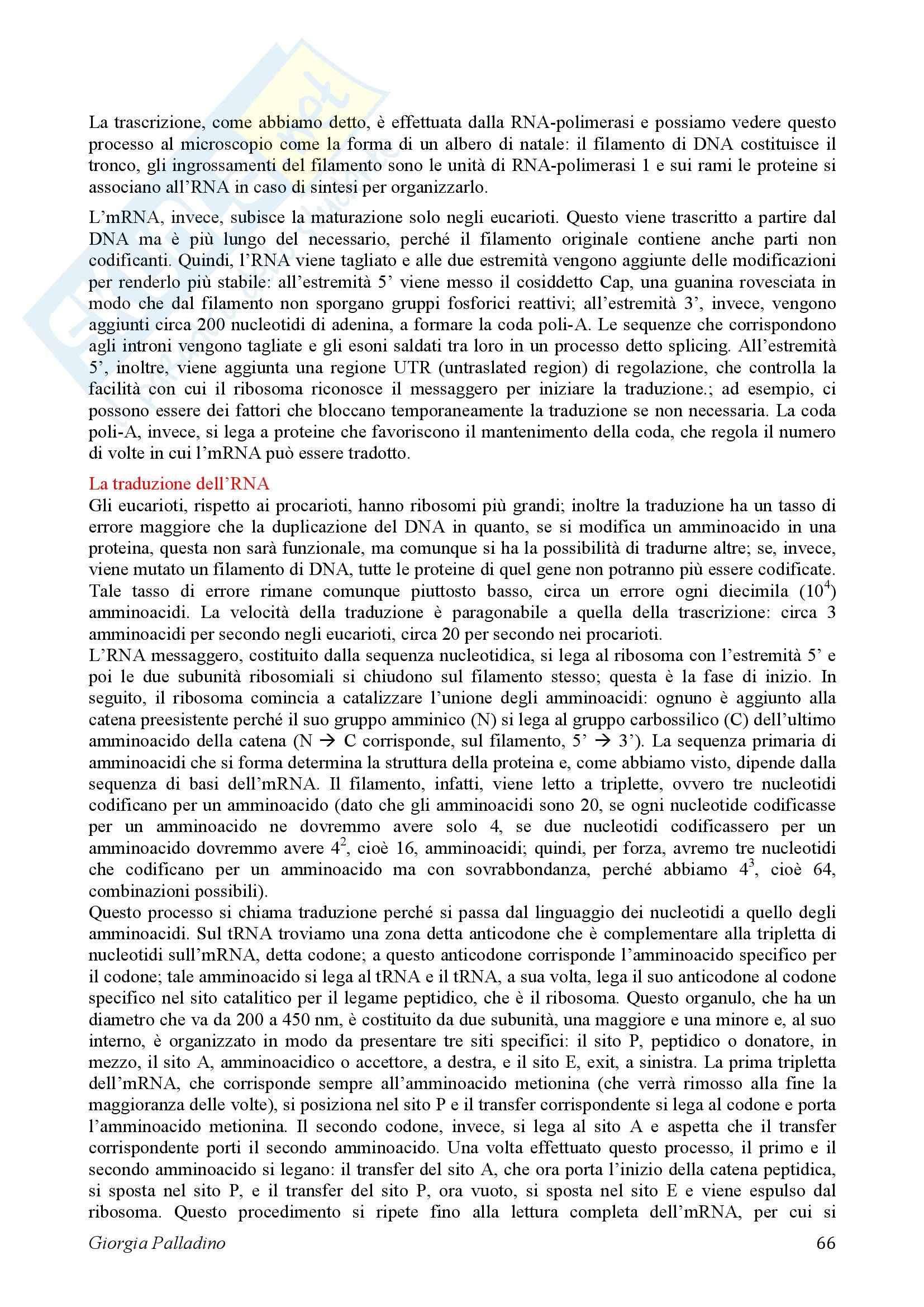 Biologia Cellulare Pag. 66