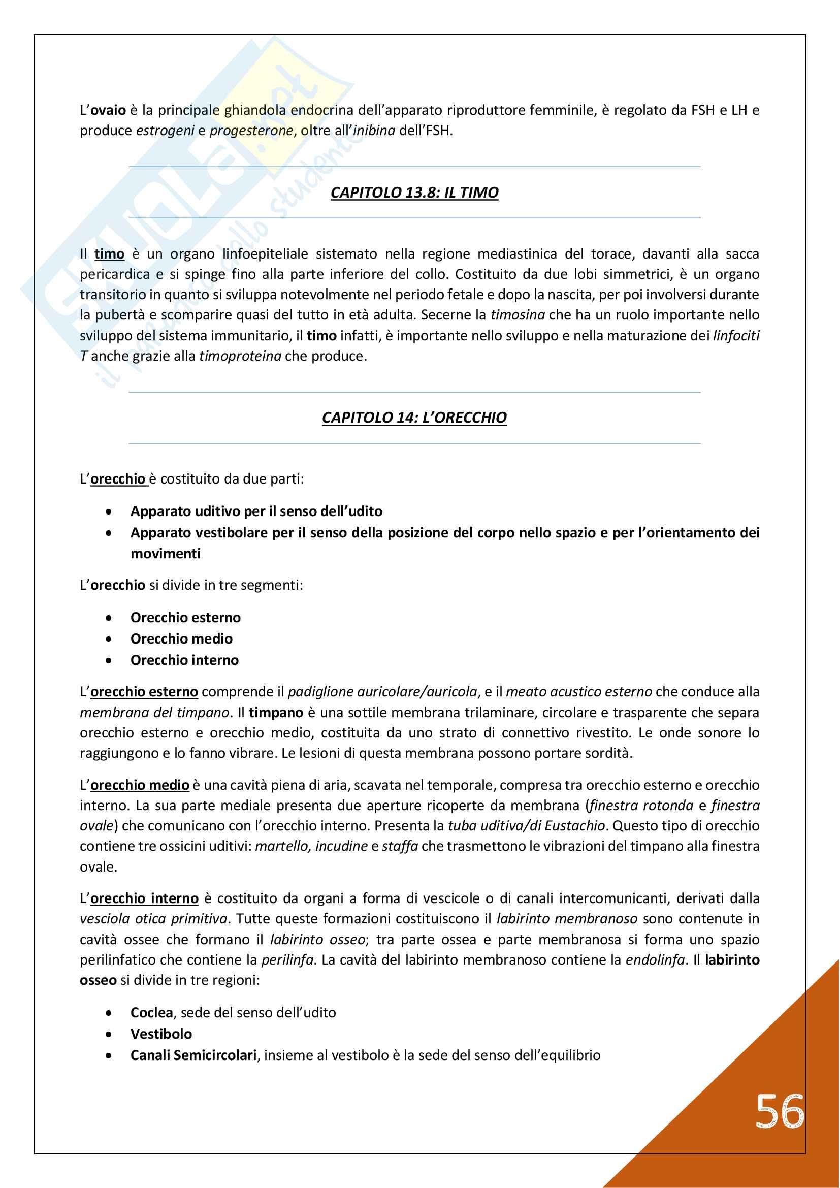 Anatomia Umana - 1° Anno Scienze Motorie Pag. 56