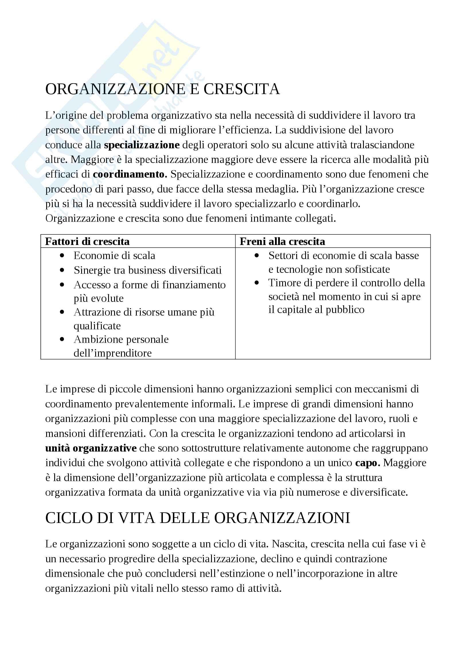 Gestione aziendale - Riassunto Pag. 2