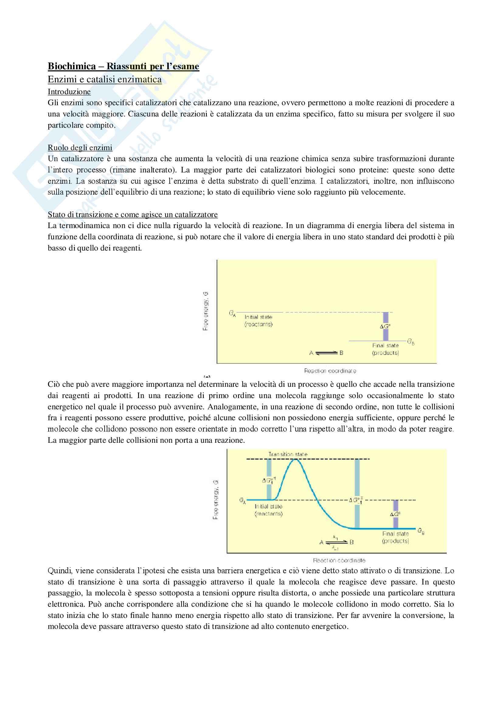 Appunti biochimica