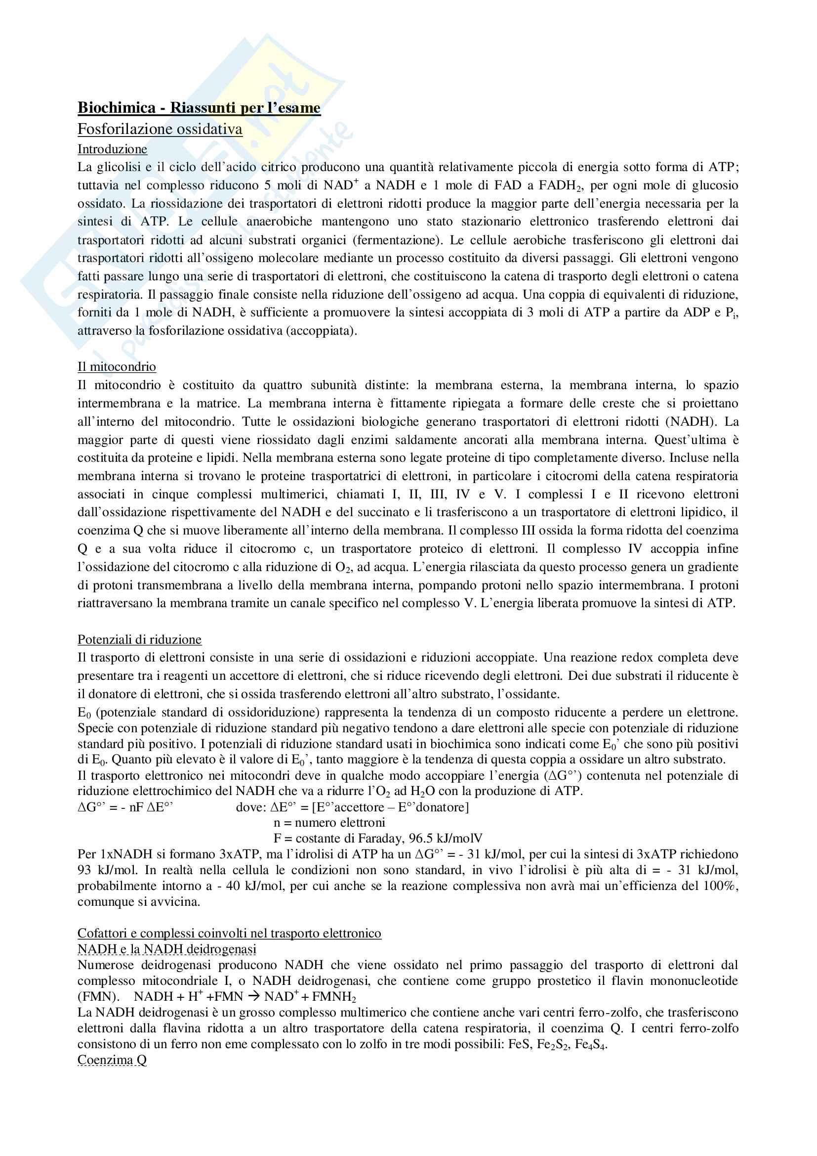 Appunti biochimica Pag. 31