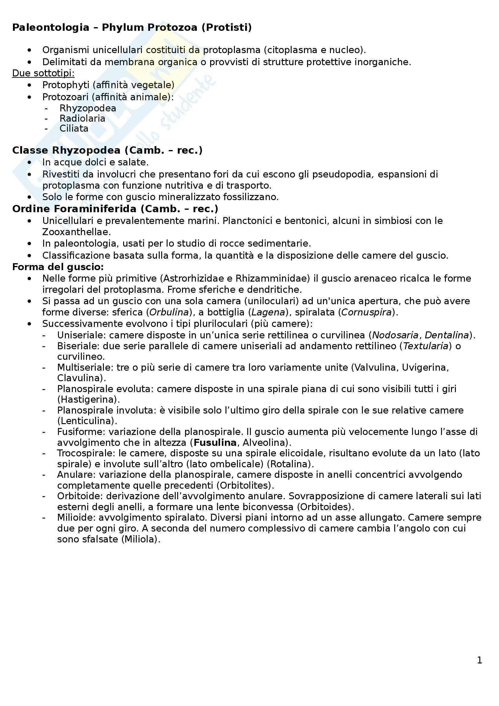 Riassunto esame Paleontologia, prof. Esu, libro consigliato Paleontologia generale e sistematica degli invertebrati, Allasinaz