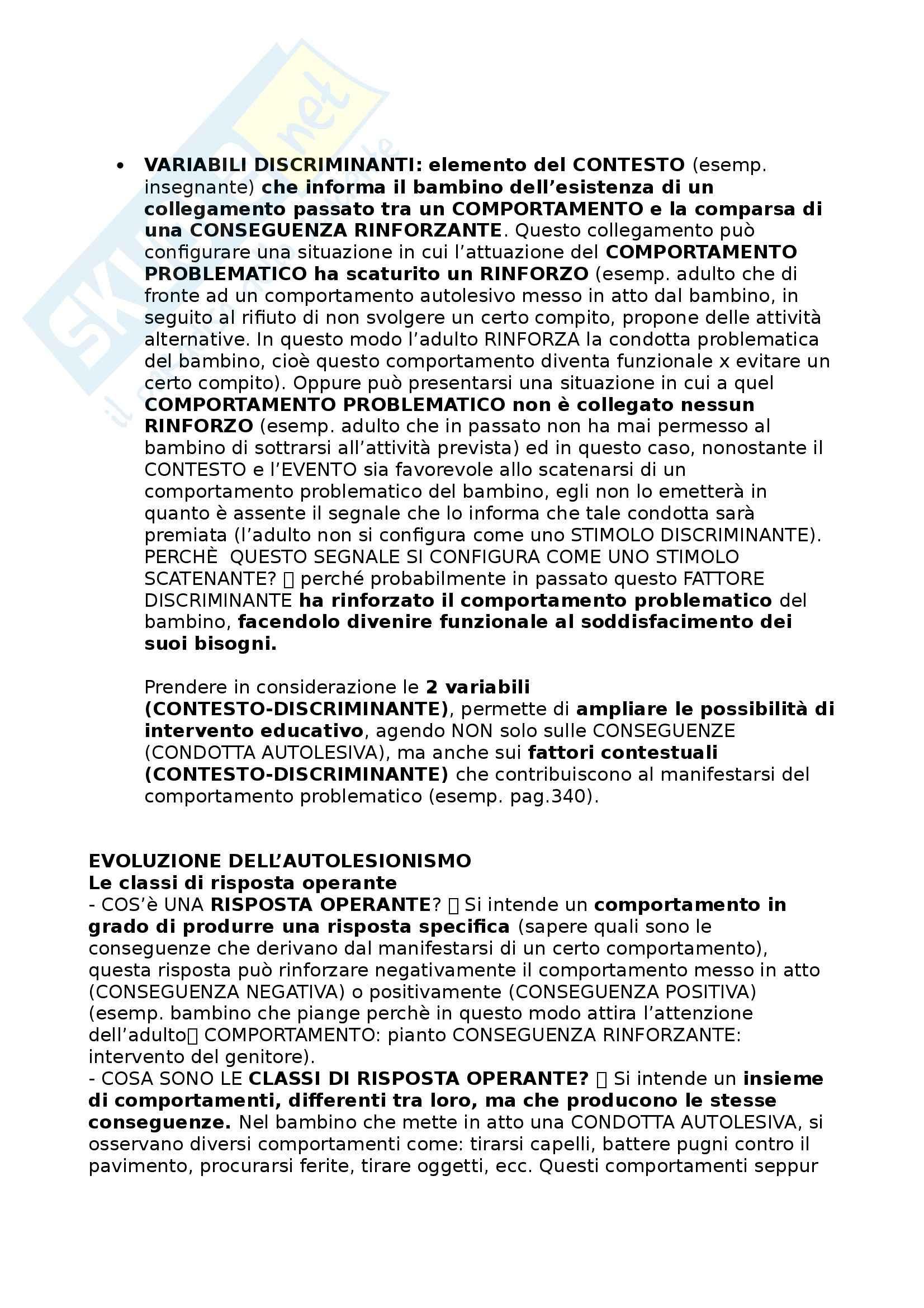 Riassunto esame Didattica e Pedagogia Speciale, prof. Cottini Pag. 26
