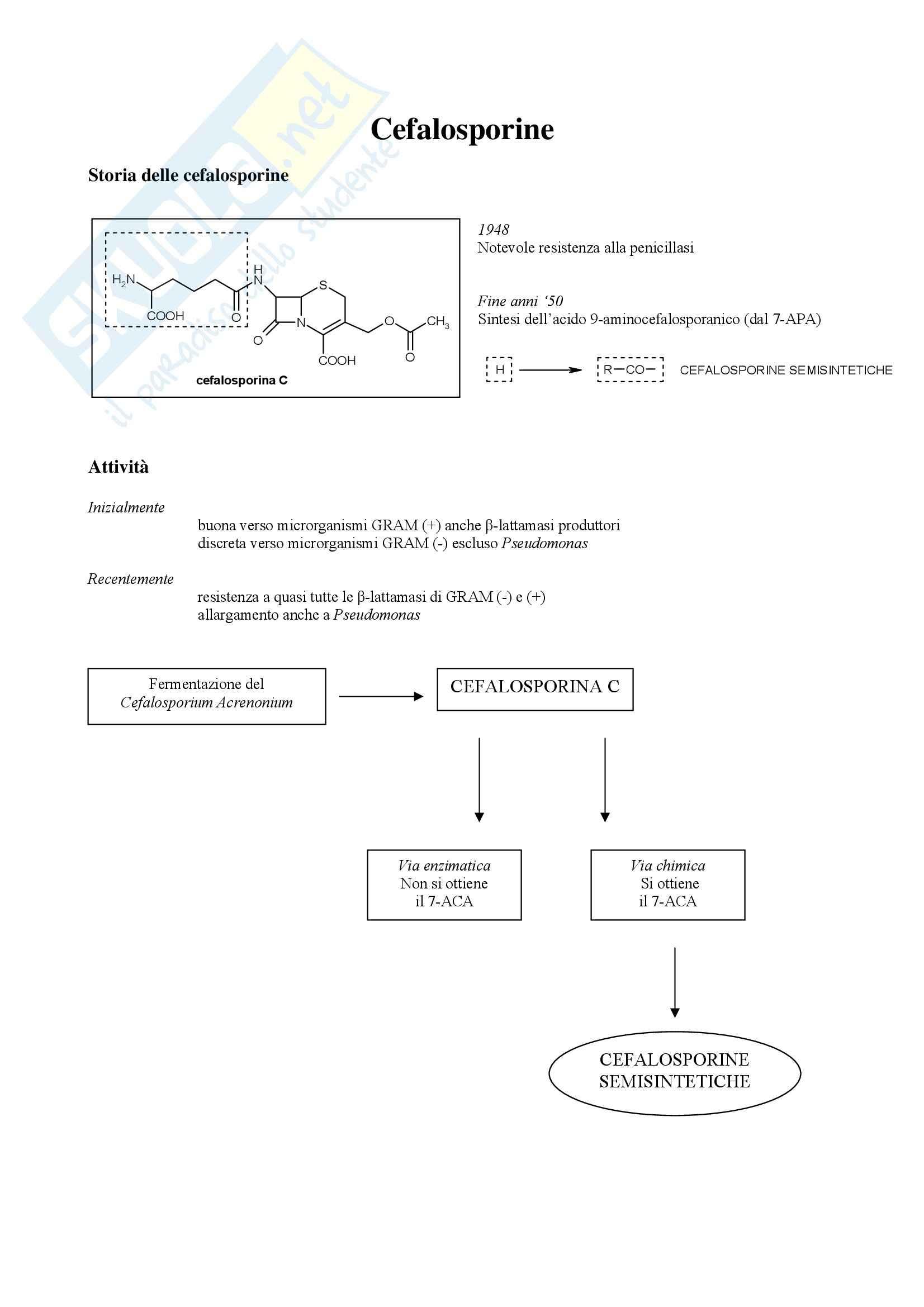 Chimica farmaceutica e tossicologica - cefalosporine